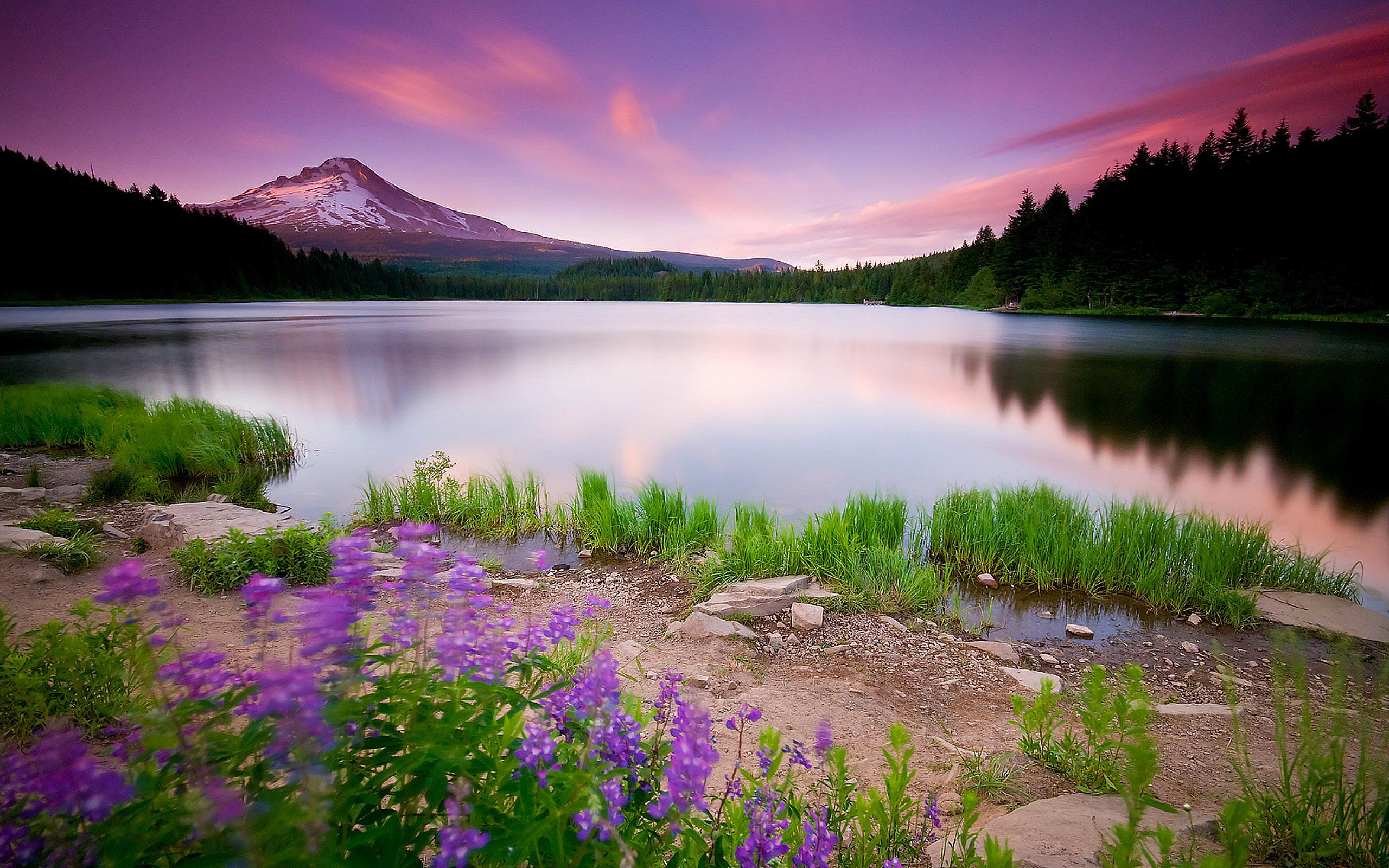 Горы и озеро  № 861576  скачать