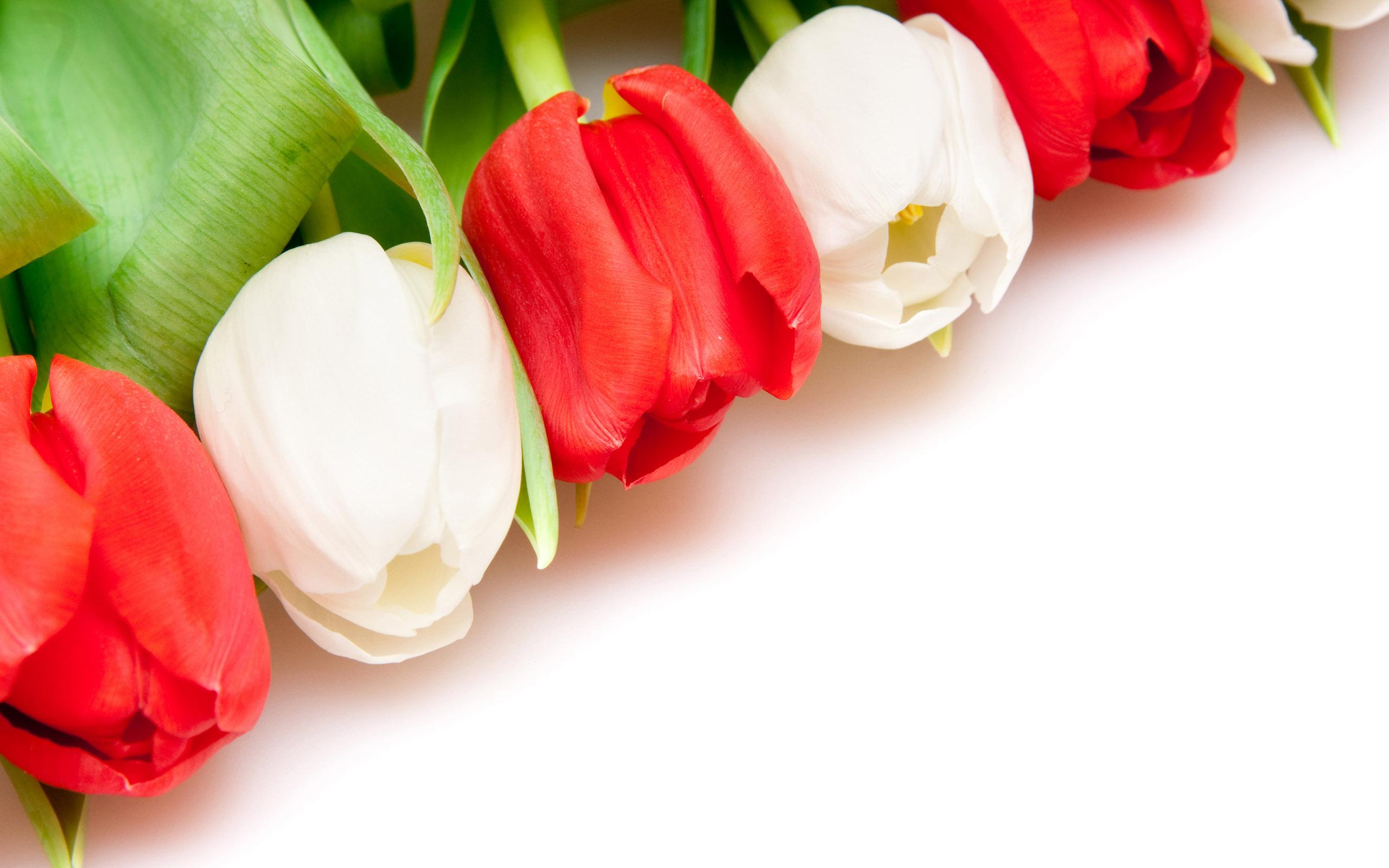 Открытки цветок