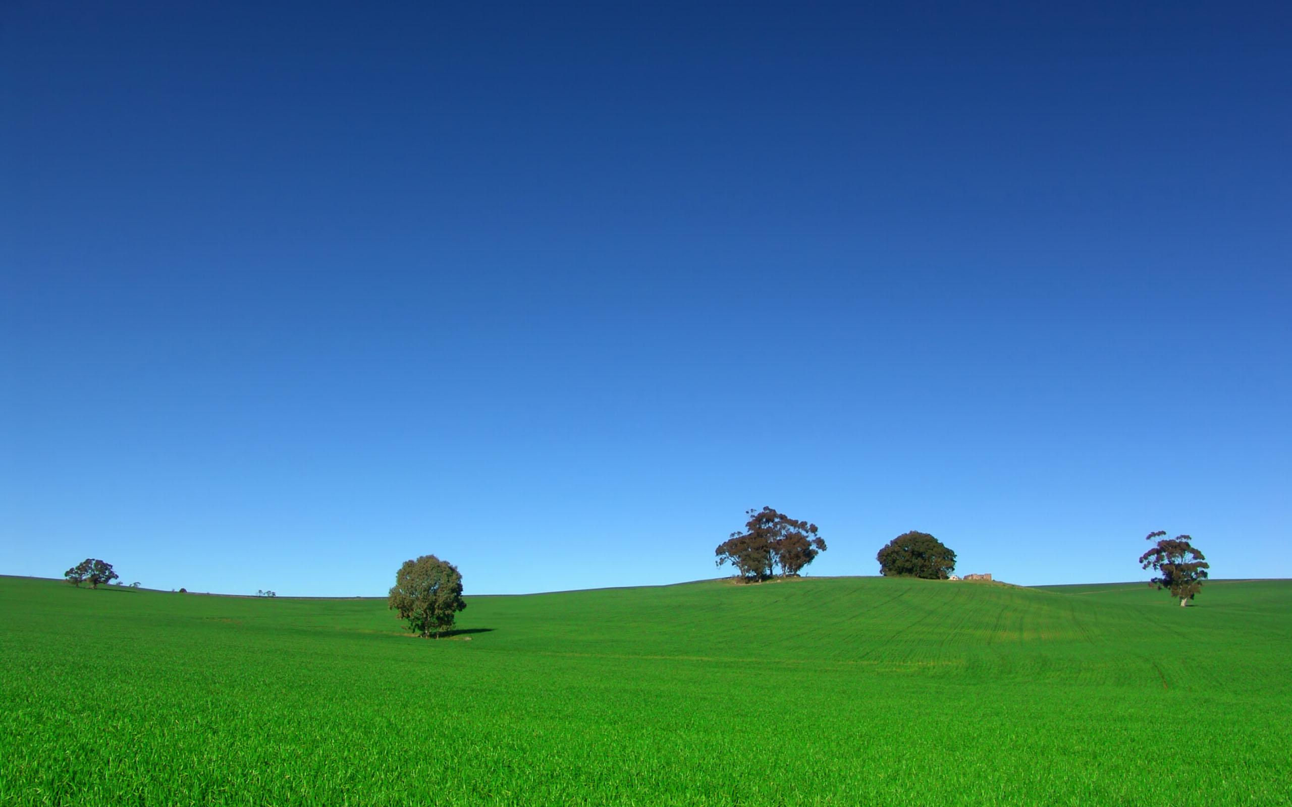 Горы ясный день поле деревья  № 3847547 загрузить