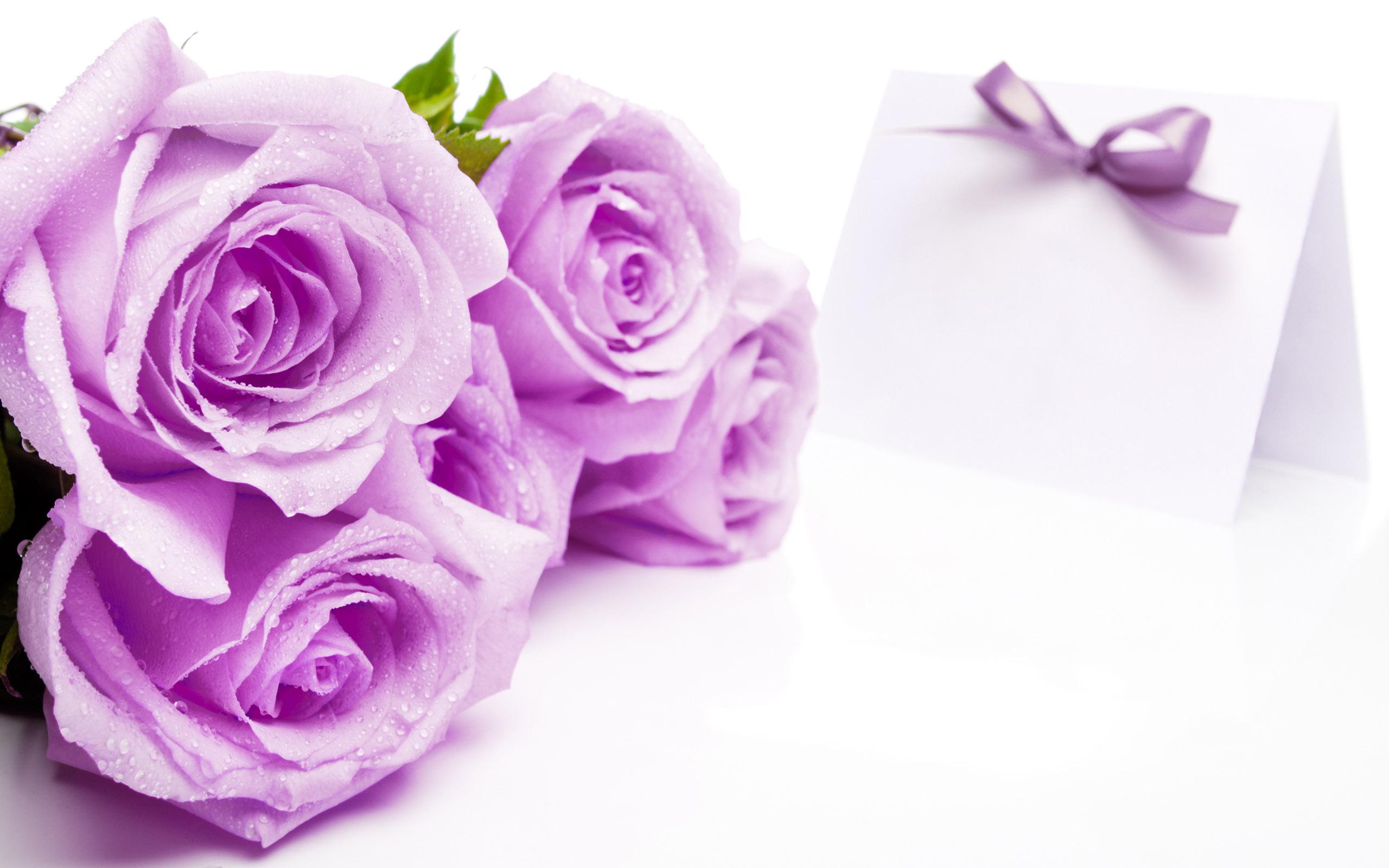 цветы тетрадь листы сердце  № 1351121  скачать