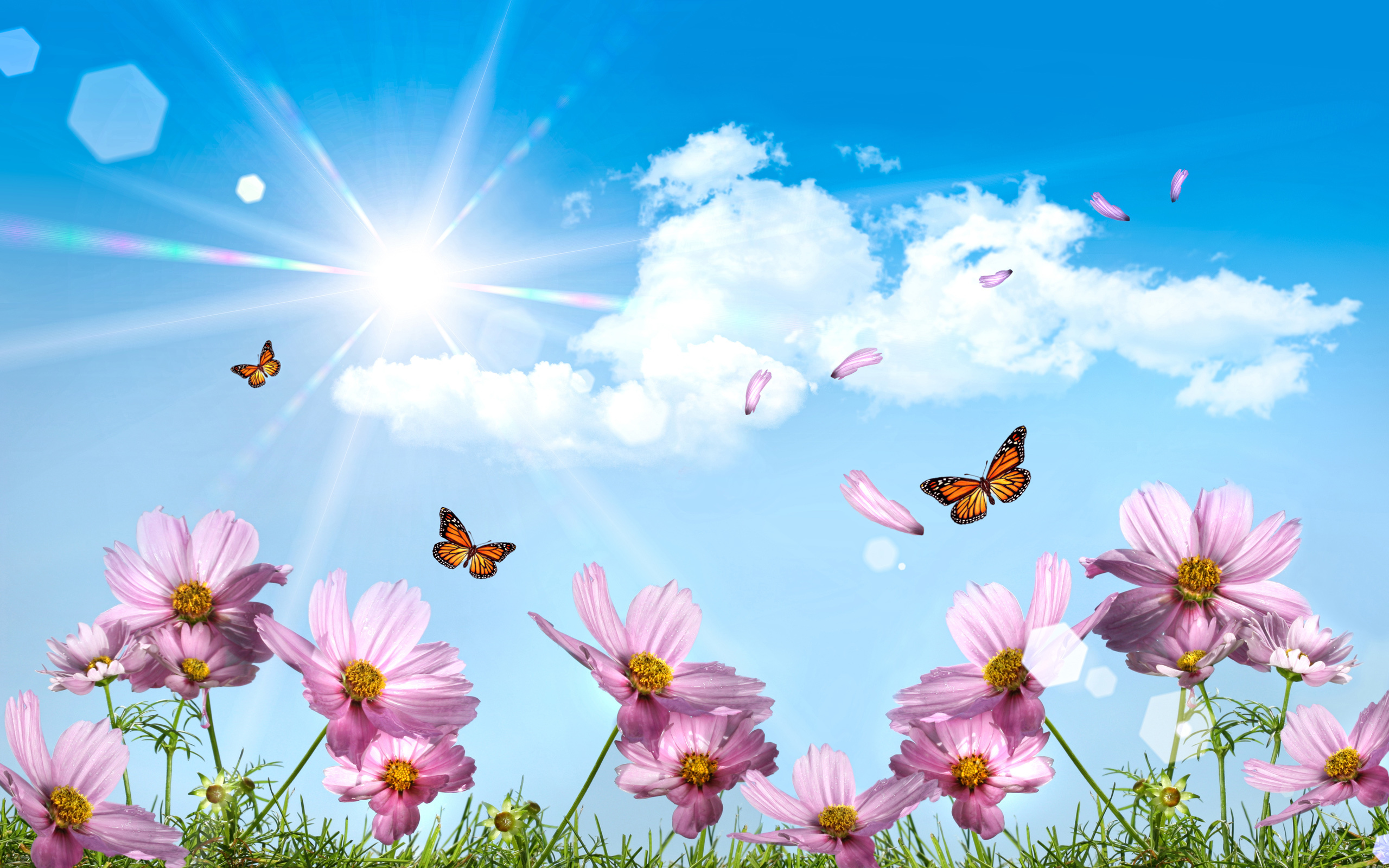 Бабочки подлетающие к цветкам  № 2991700 загрузить