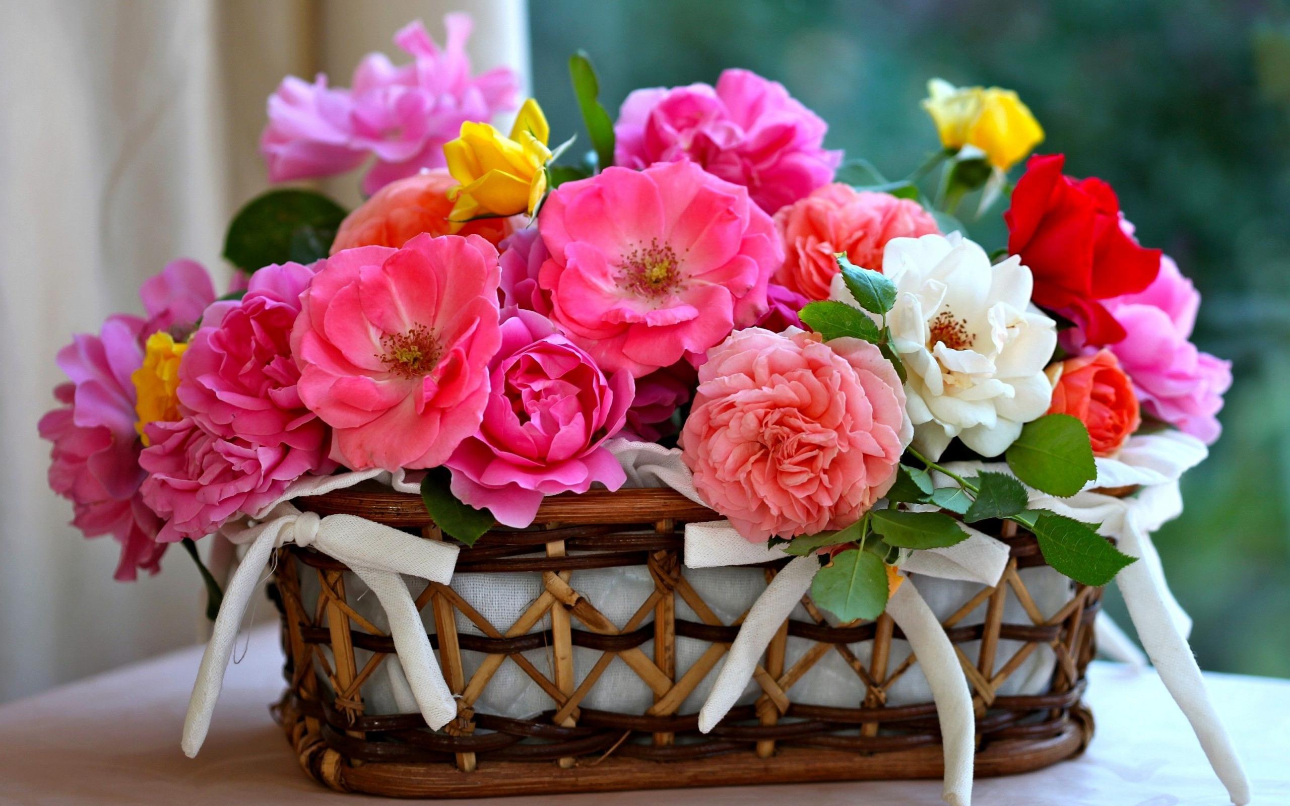 Красивые цветы для поздравления фото вот