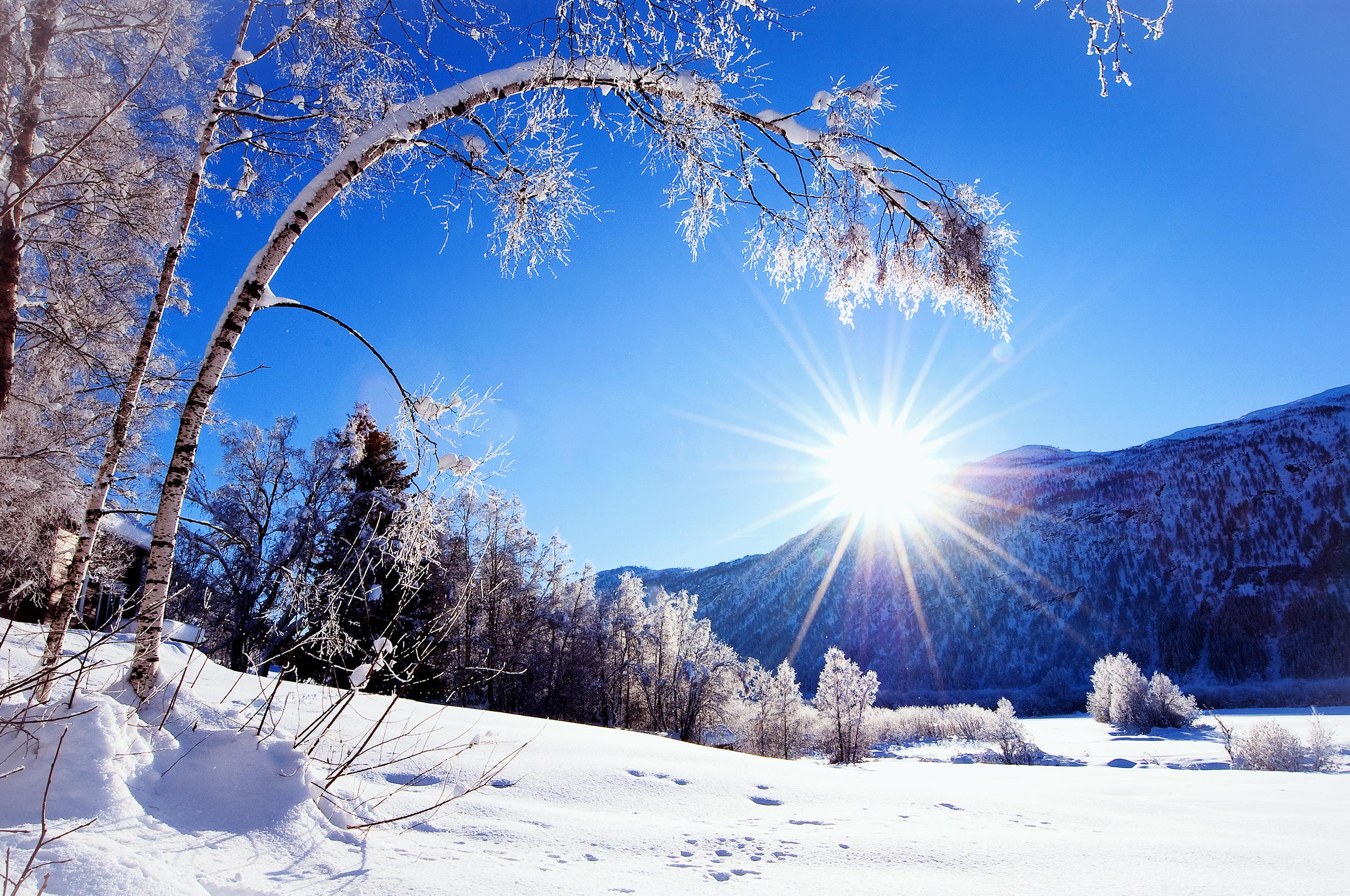 Картинка зимний солнечный день