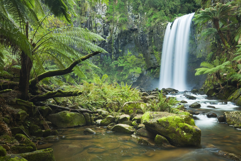 природа река водопад деревья  № 2490157  скачать
