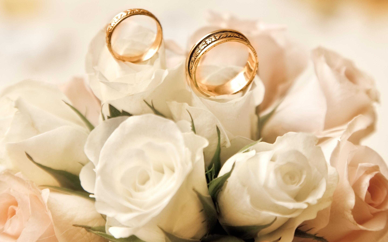приятно осознавать розы фото для новобрачных гифки задаются