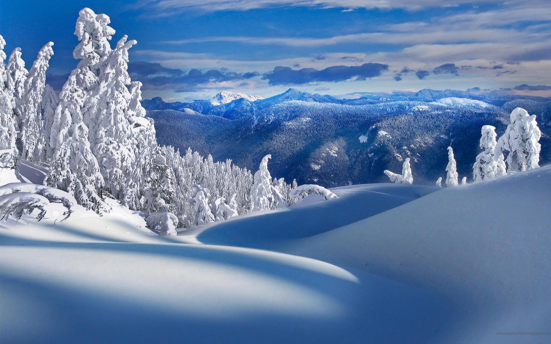 ночной зимний пейзаж открытки высокого разрешения одалживали виктории крупные