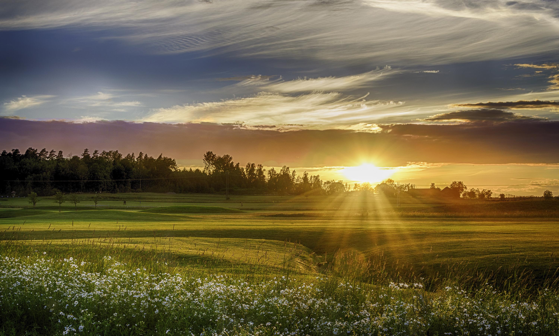 сценарий восход солнца в поле фото для увеличения