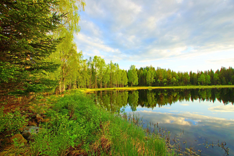 Озерцо  № 3195356 бесплатно