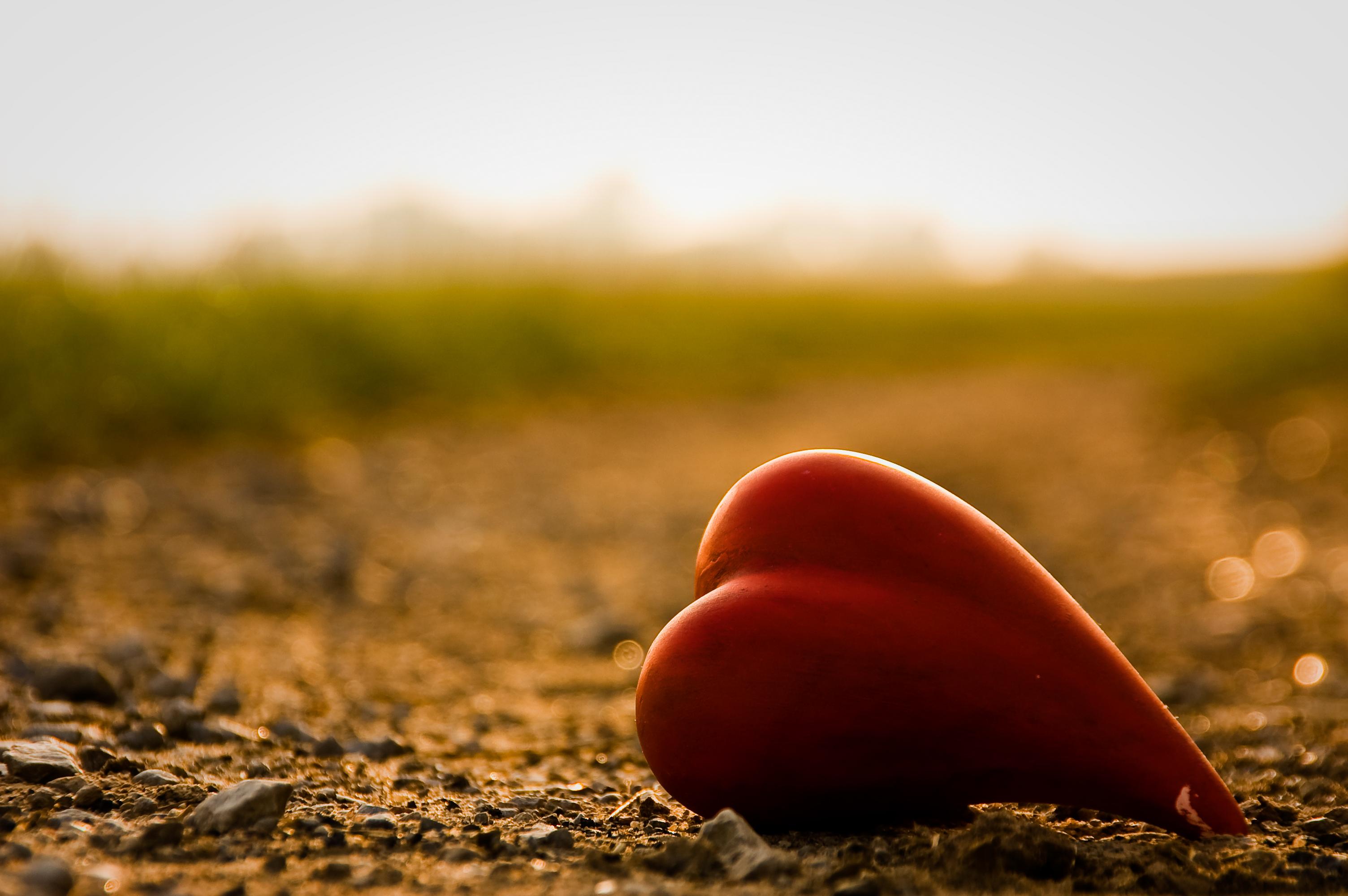 Сердце из зелени  № 1599083  скачать