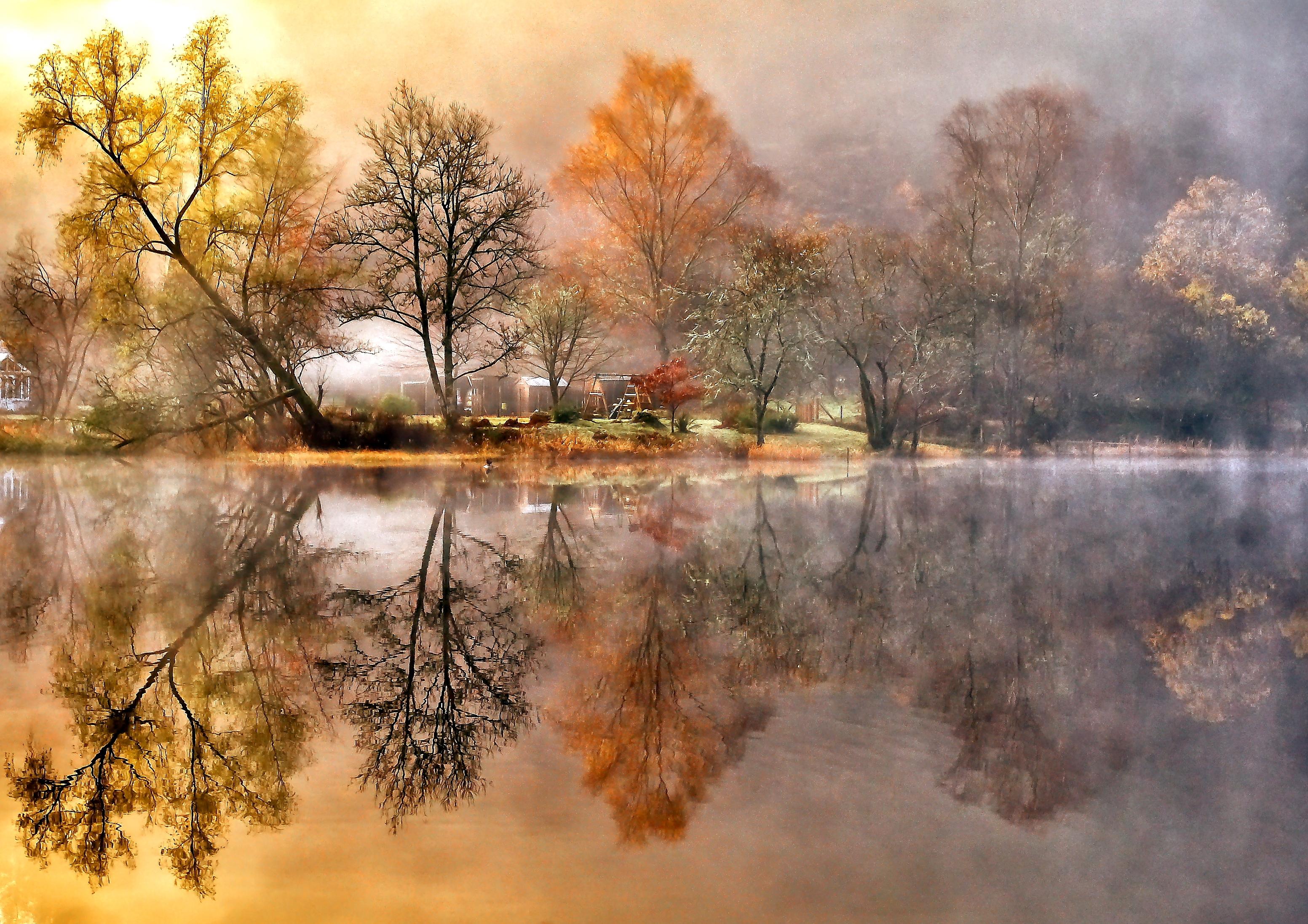 природа озеро деревья небо оссень  № 2536009  скачать