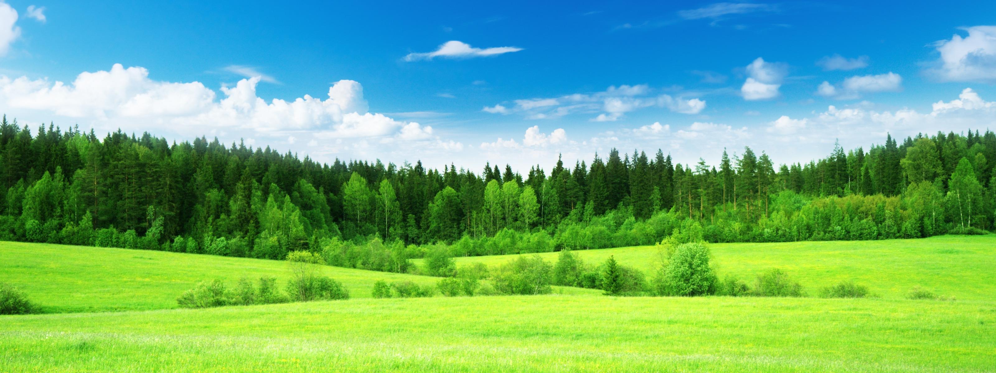 Панорамные картинки природа