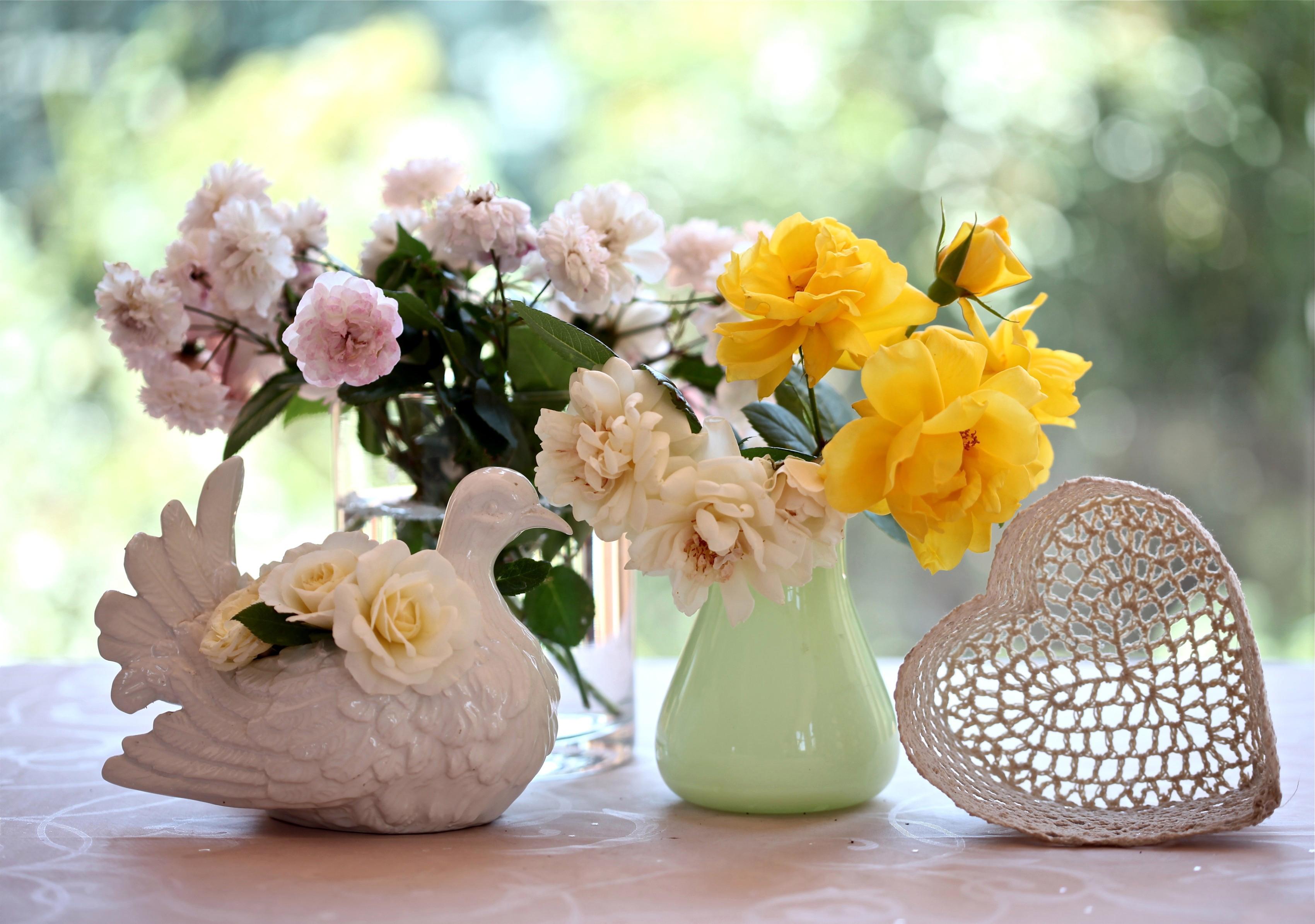 Потрясающие цветы в картинках