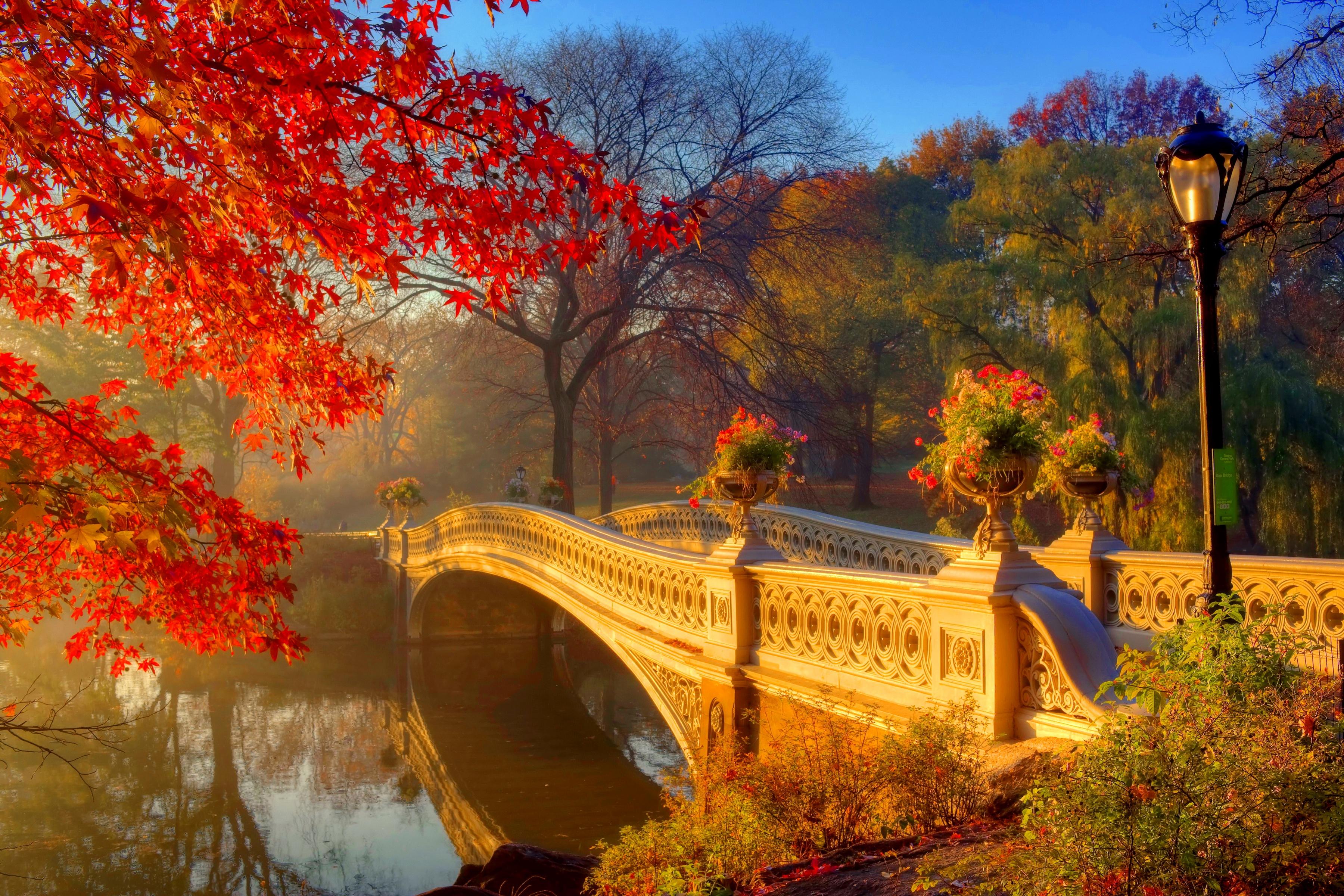 природа страны архитектура река мост Александр  № 2234648 бесплатно