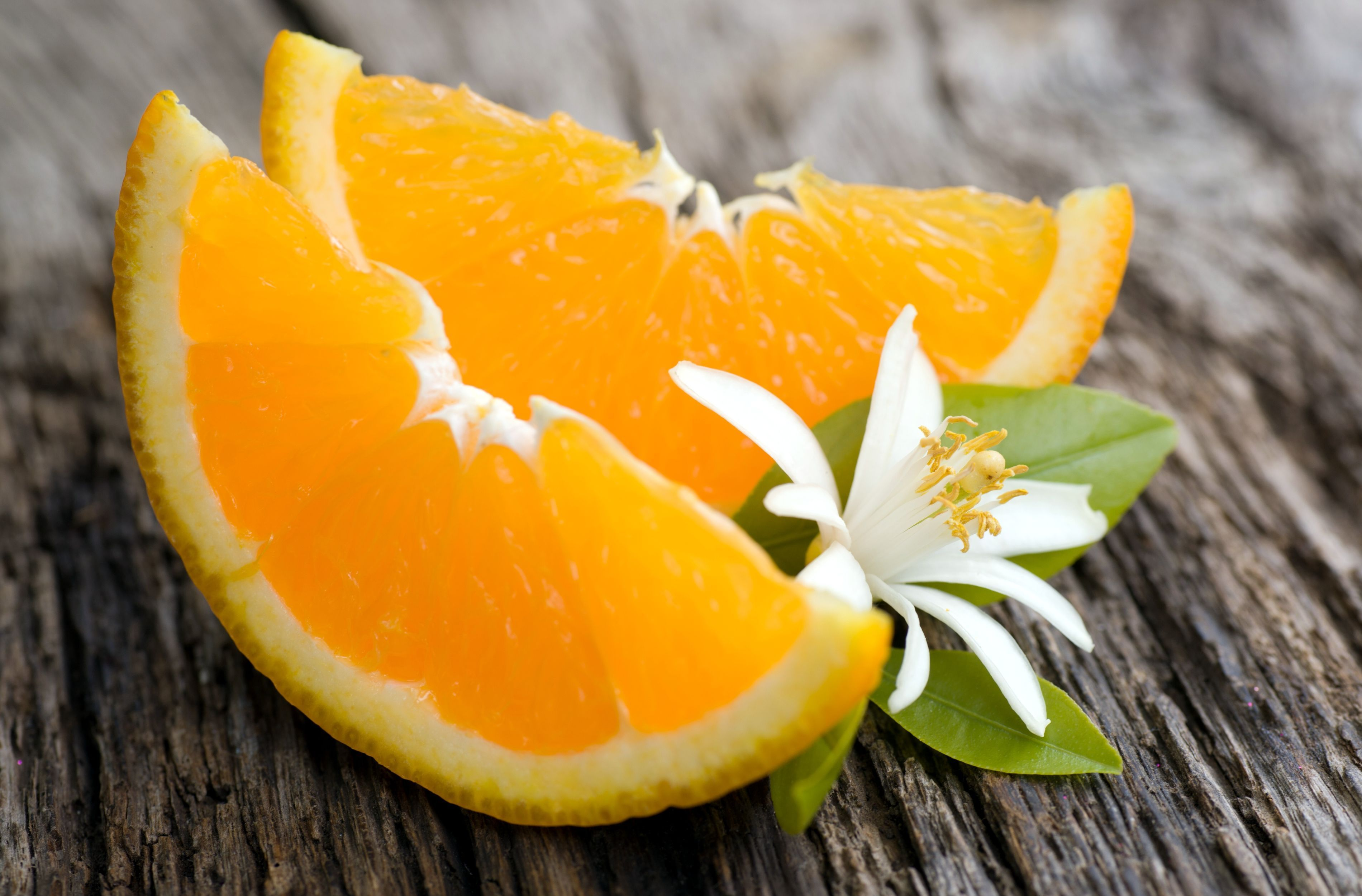Апельсин Orange  № 2933065 бесплатно