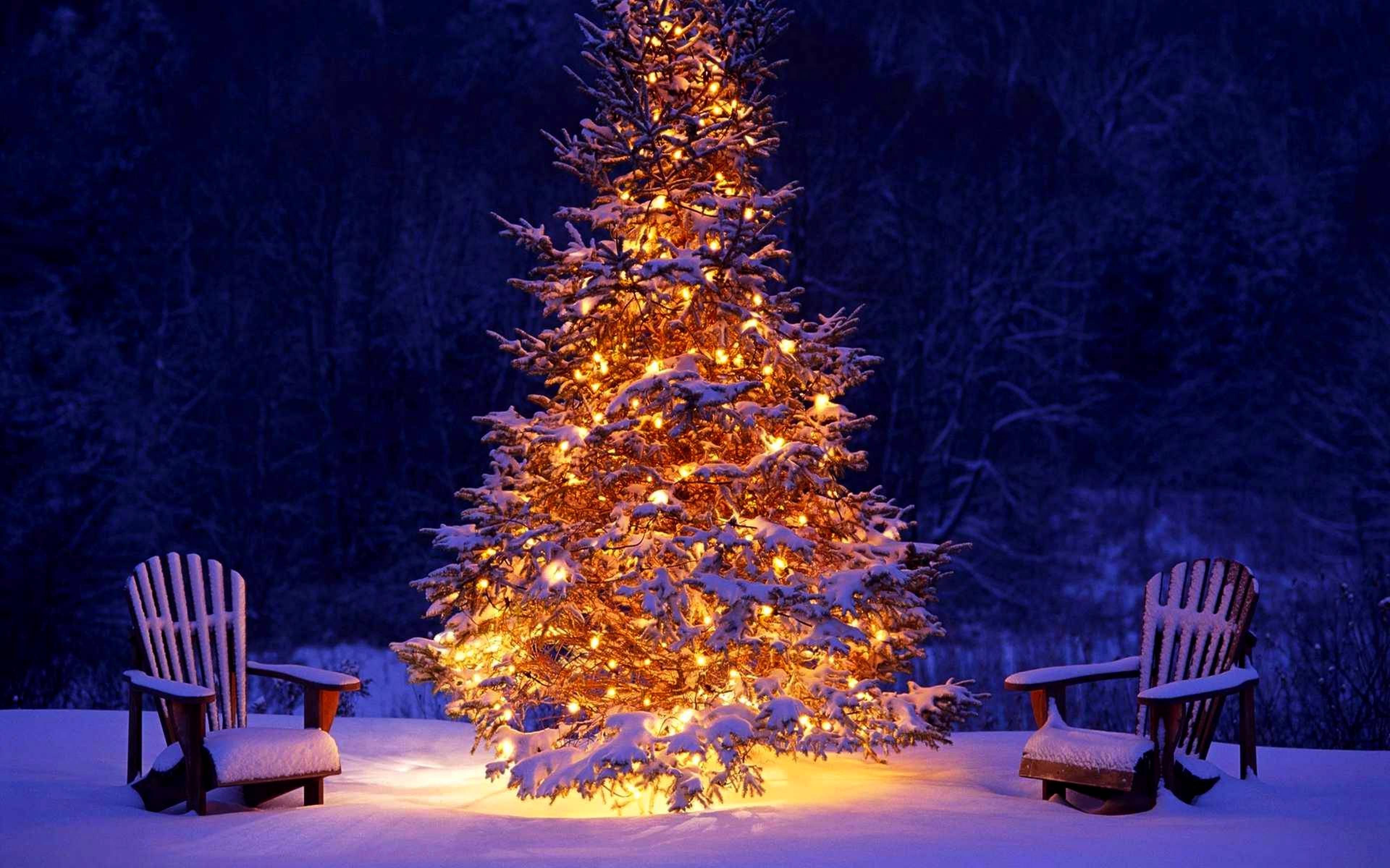 картинка супер елка буду