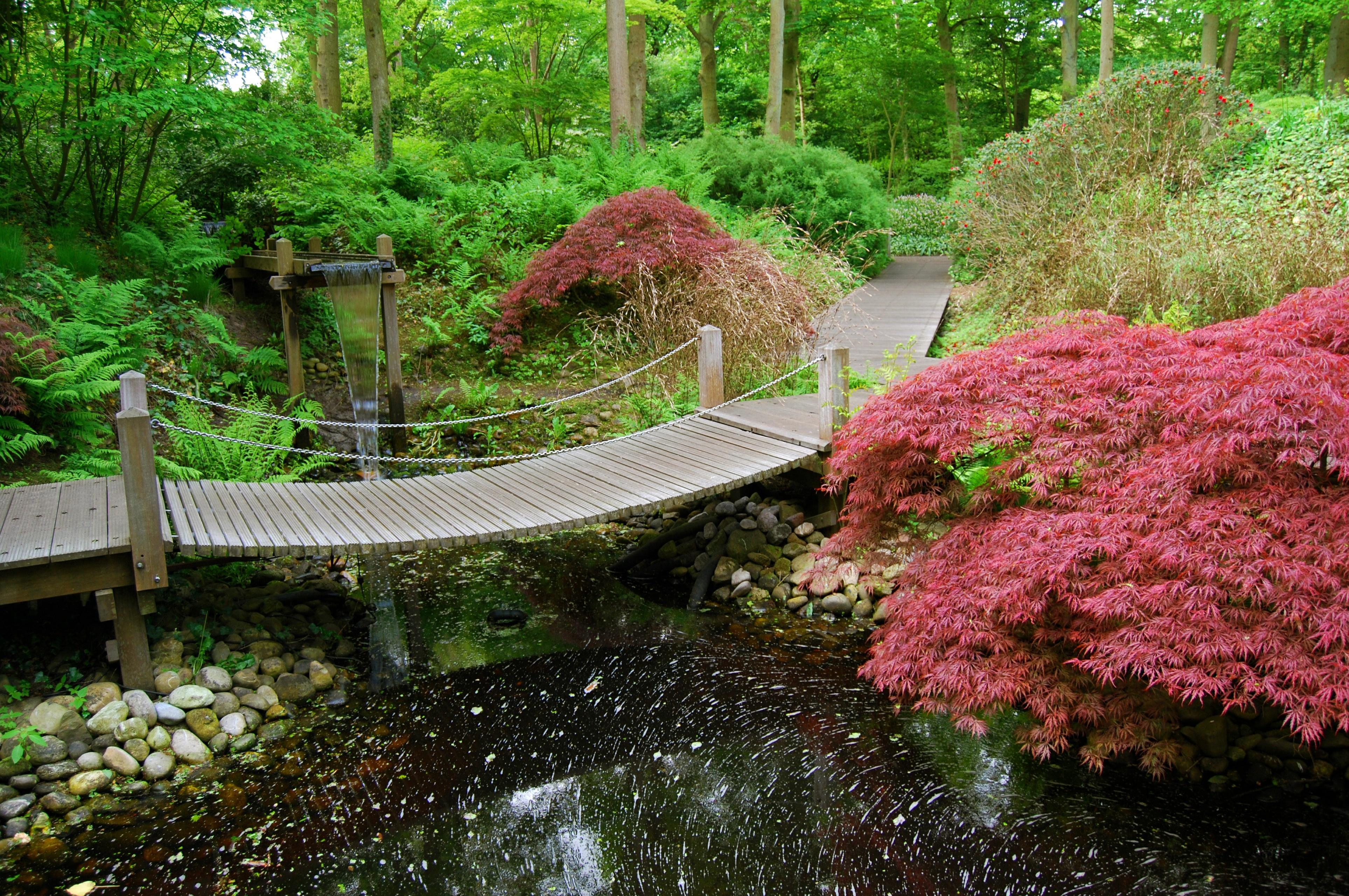 попытаемся японский сад картинки для рабочего стола тебе