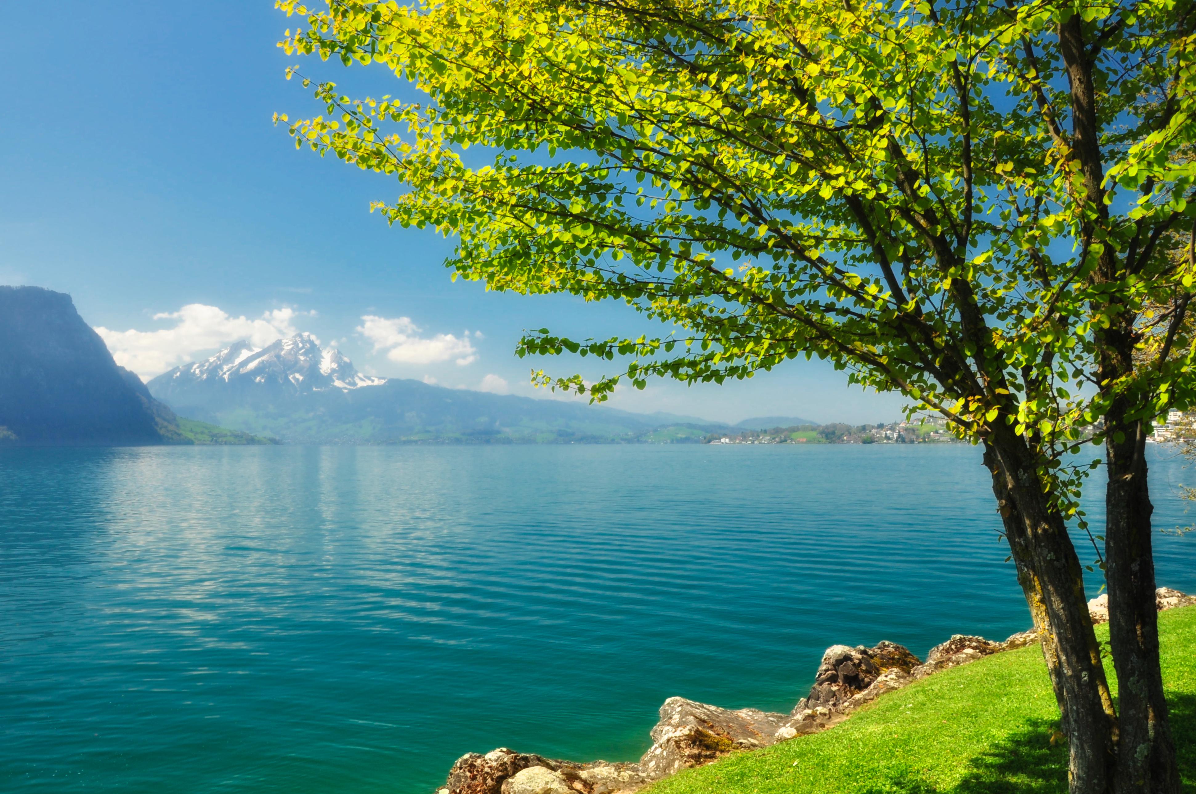 Пейзаж озеро берег  № 1211477 без смс