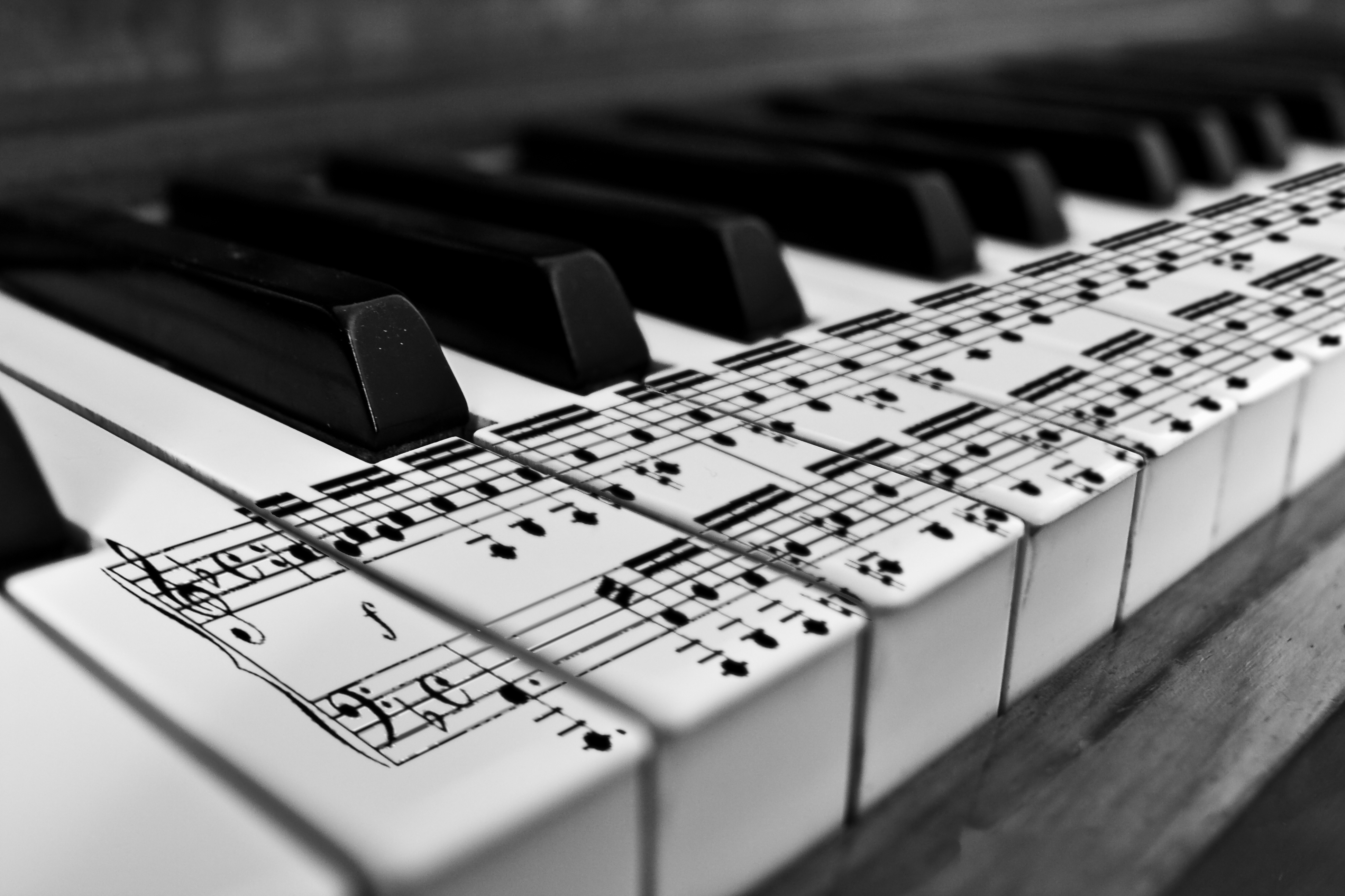 Images Of Piano Music Notes Rock Cafe