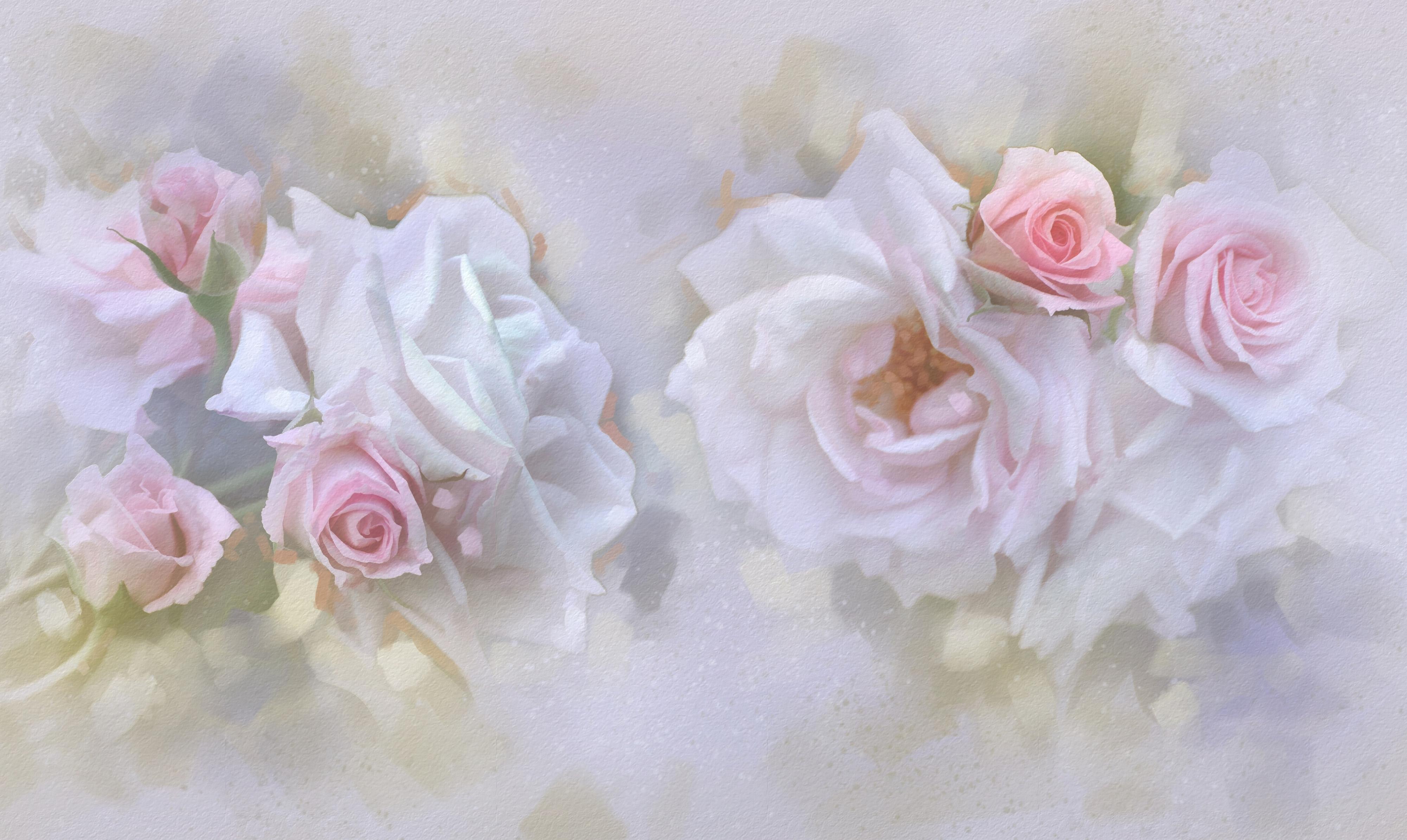 Открытки розы на стену
