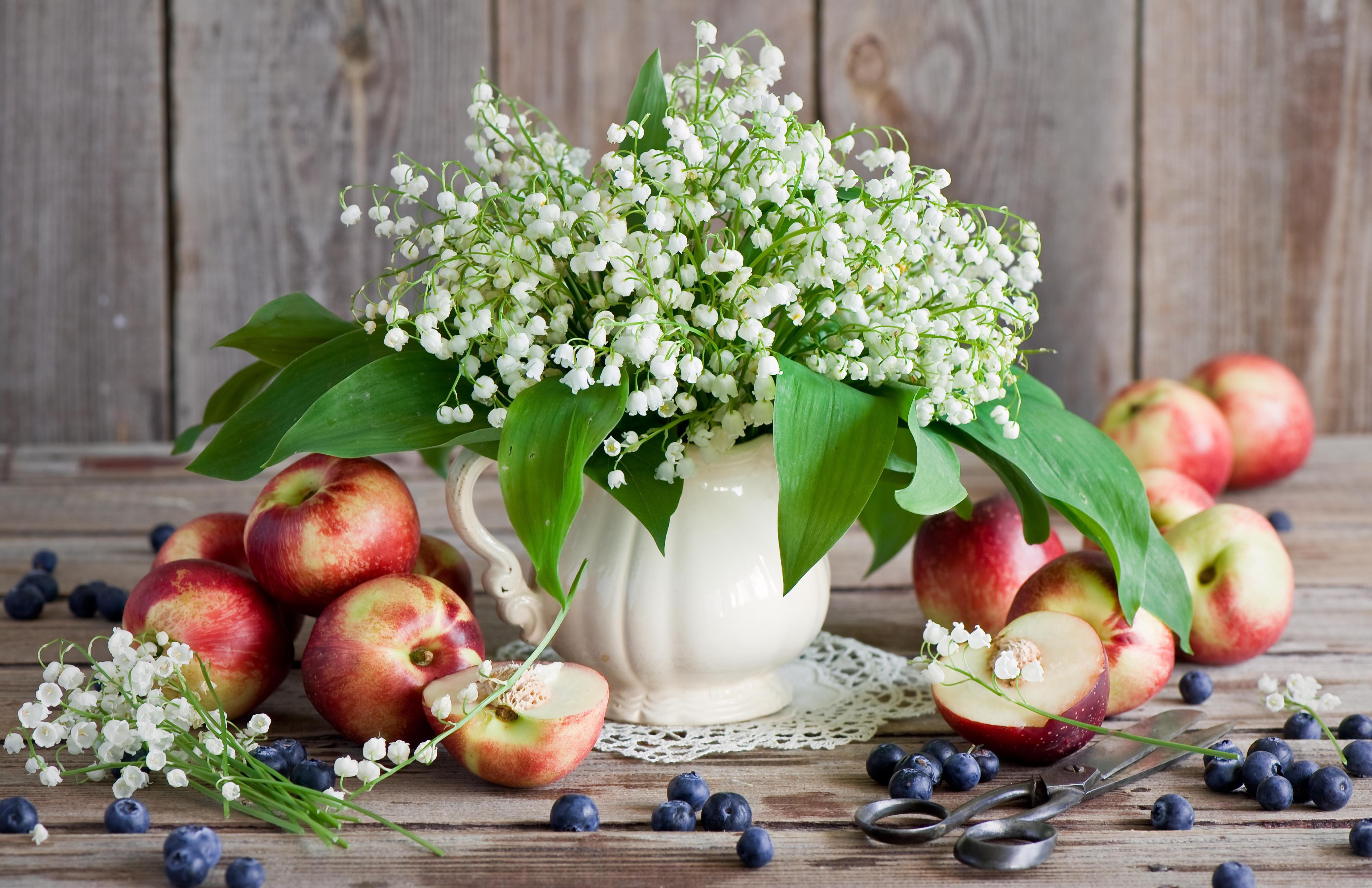 природа цветы ваза  № 1734249 загрузить