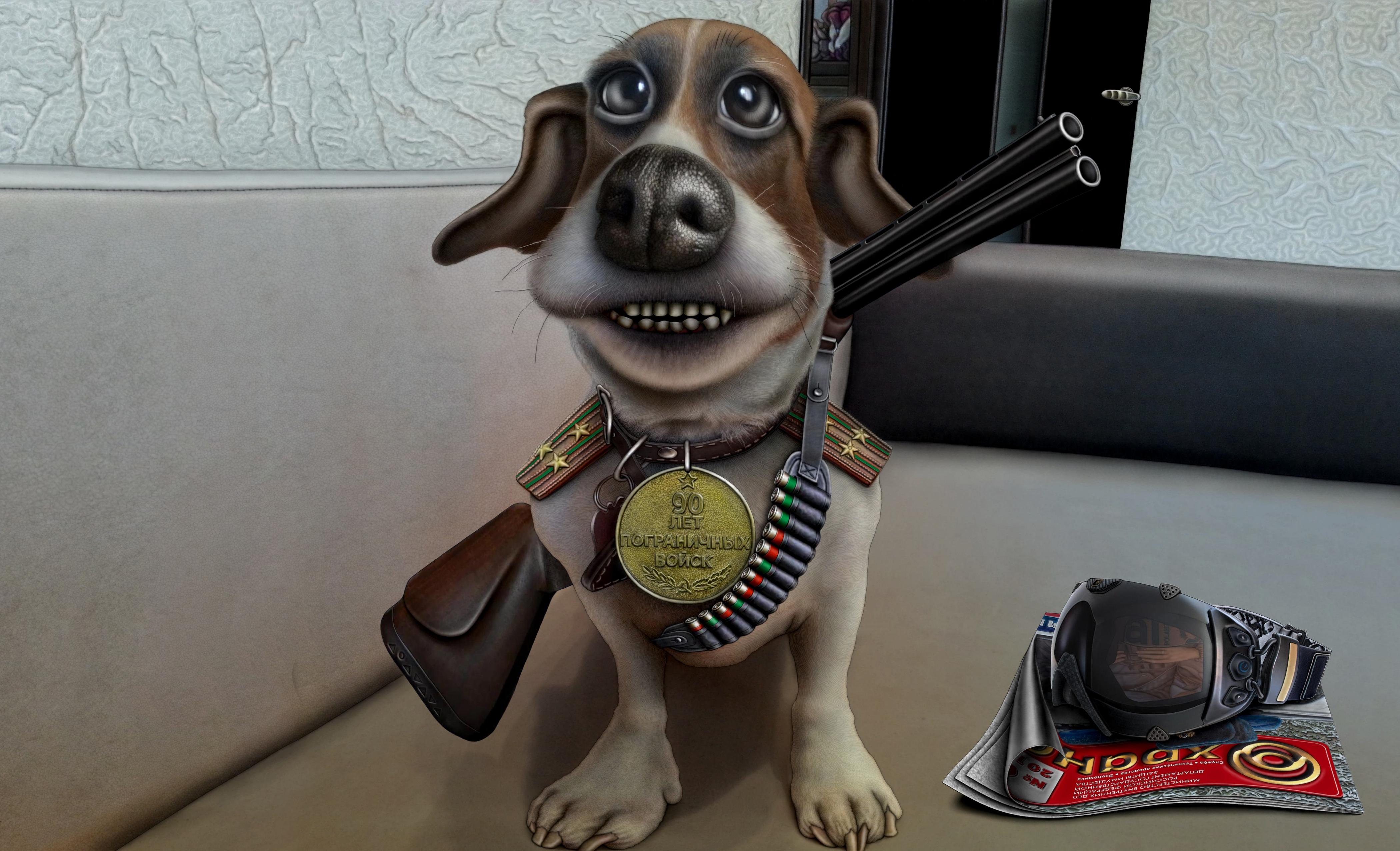Прикольные картинки и рисунки собак