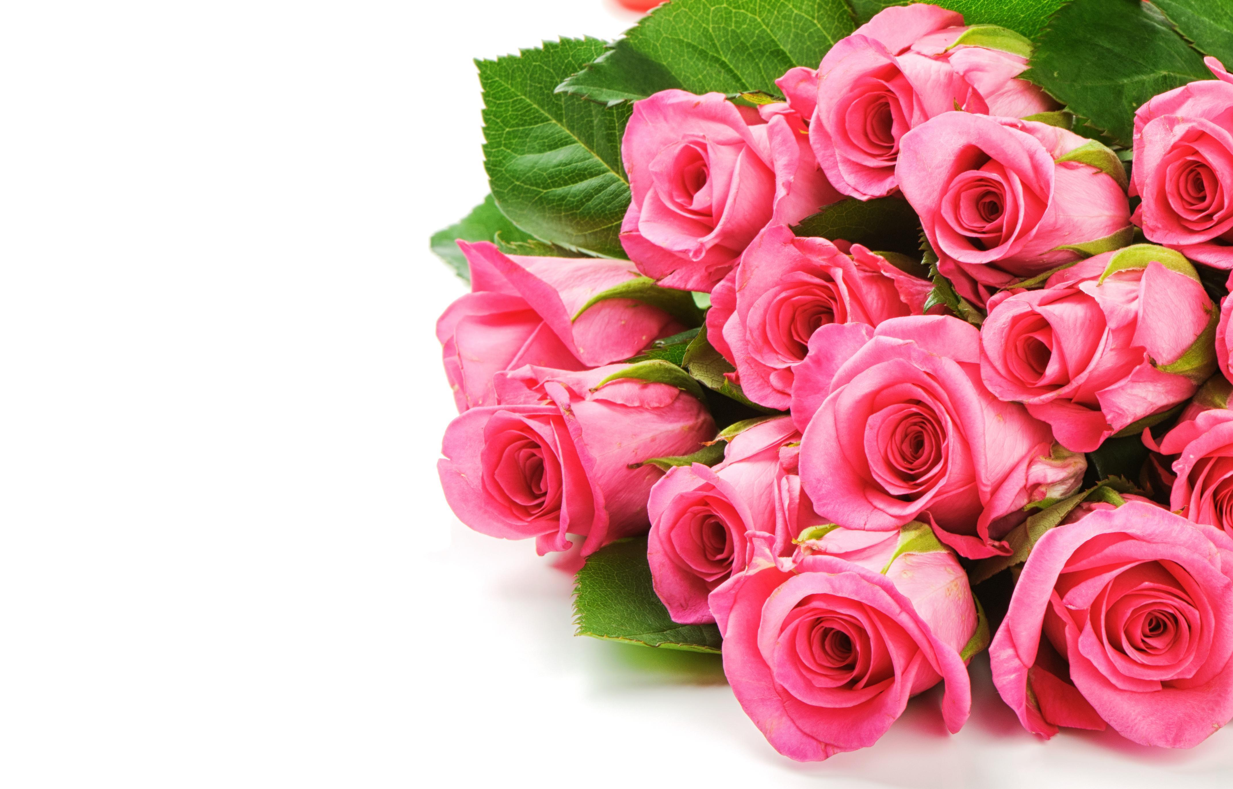 Открытка в розах, открытки