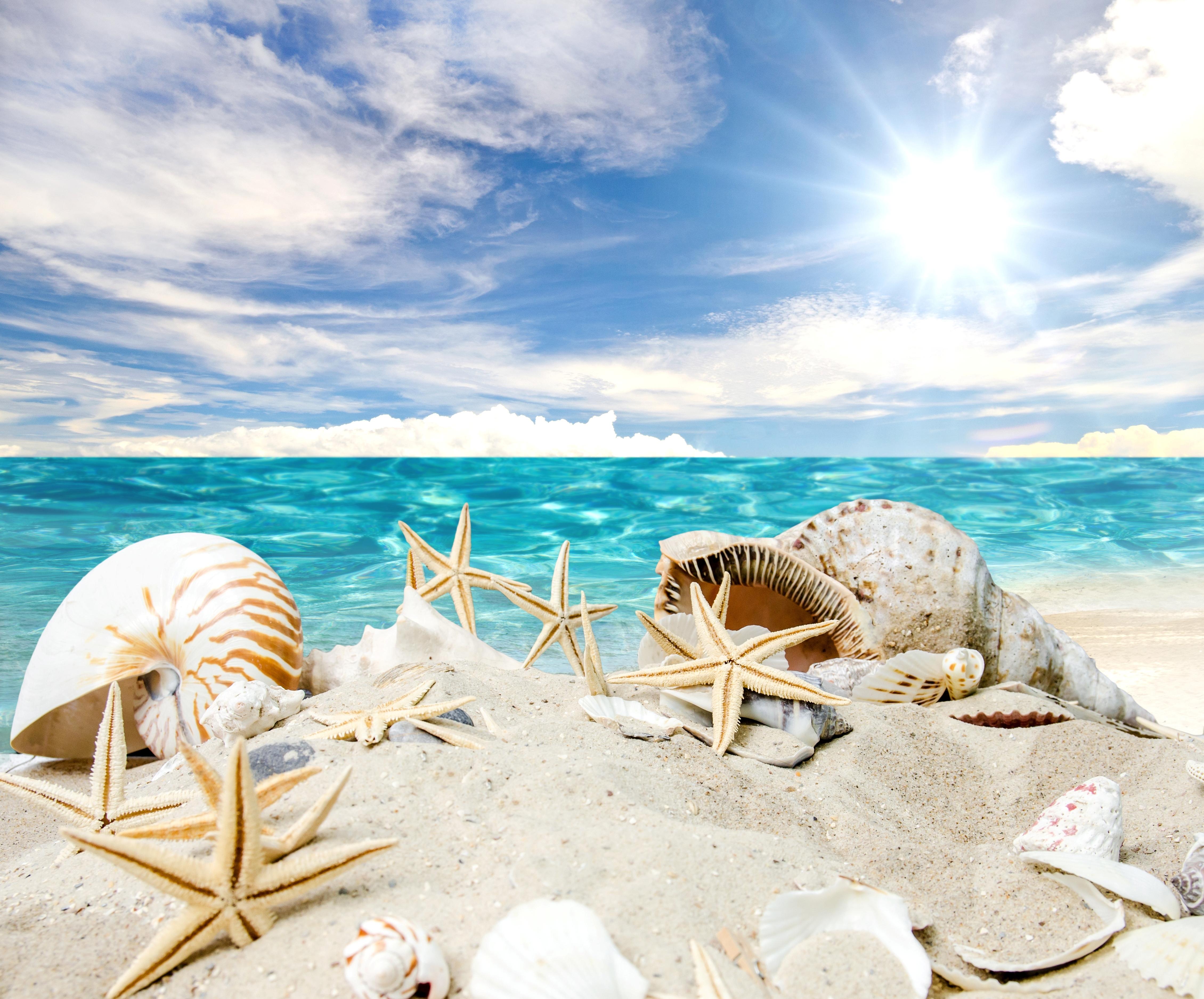 открытки море солнце пляж кипр беременность ранних сроках