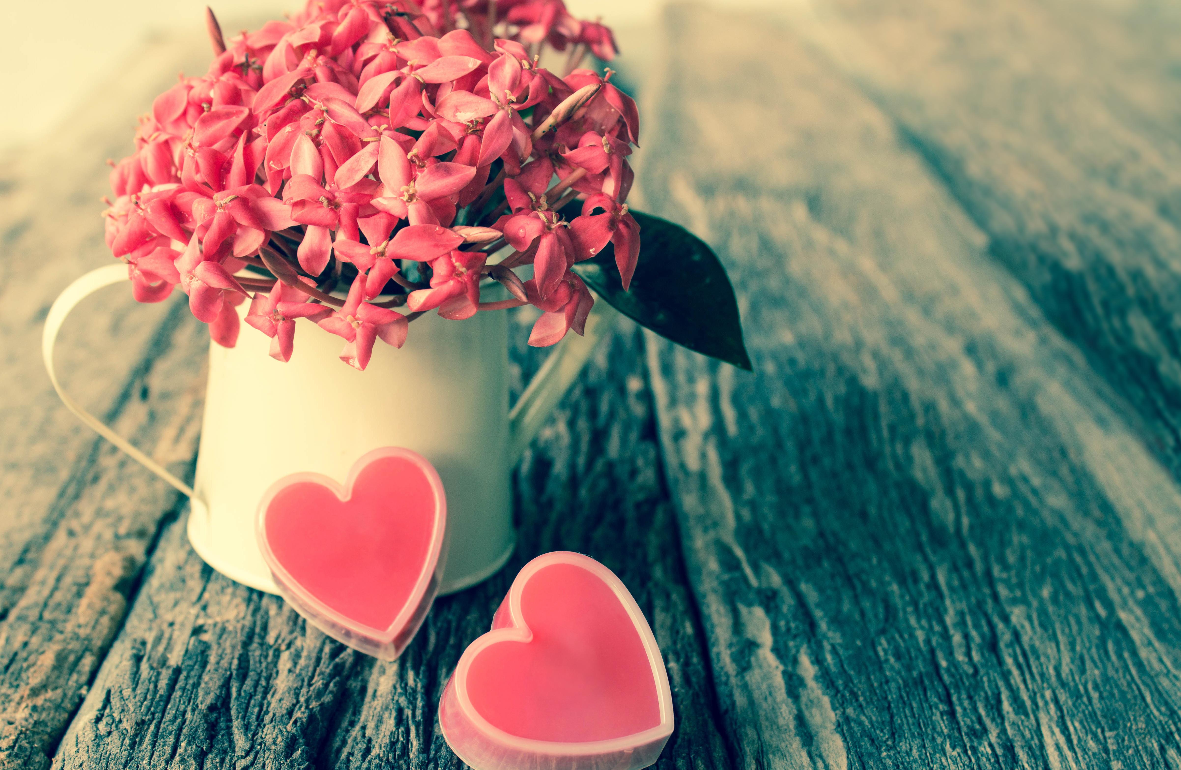 Фото цветов и сердечко