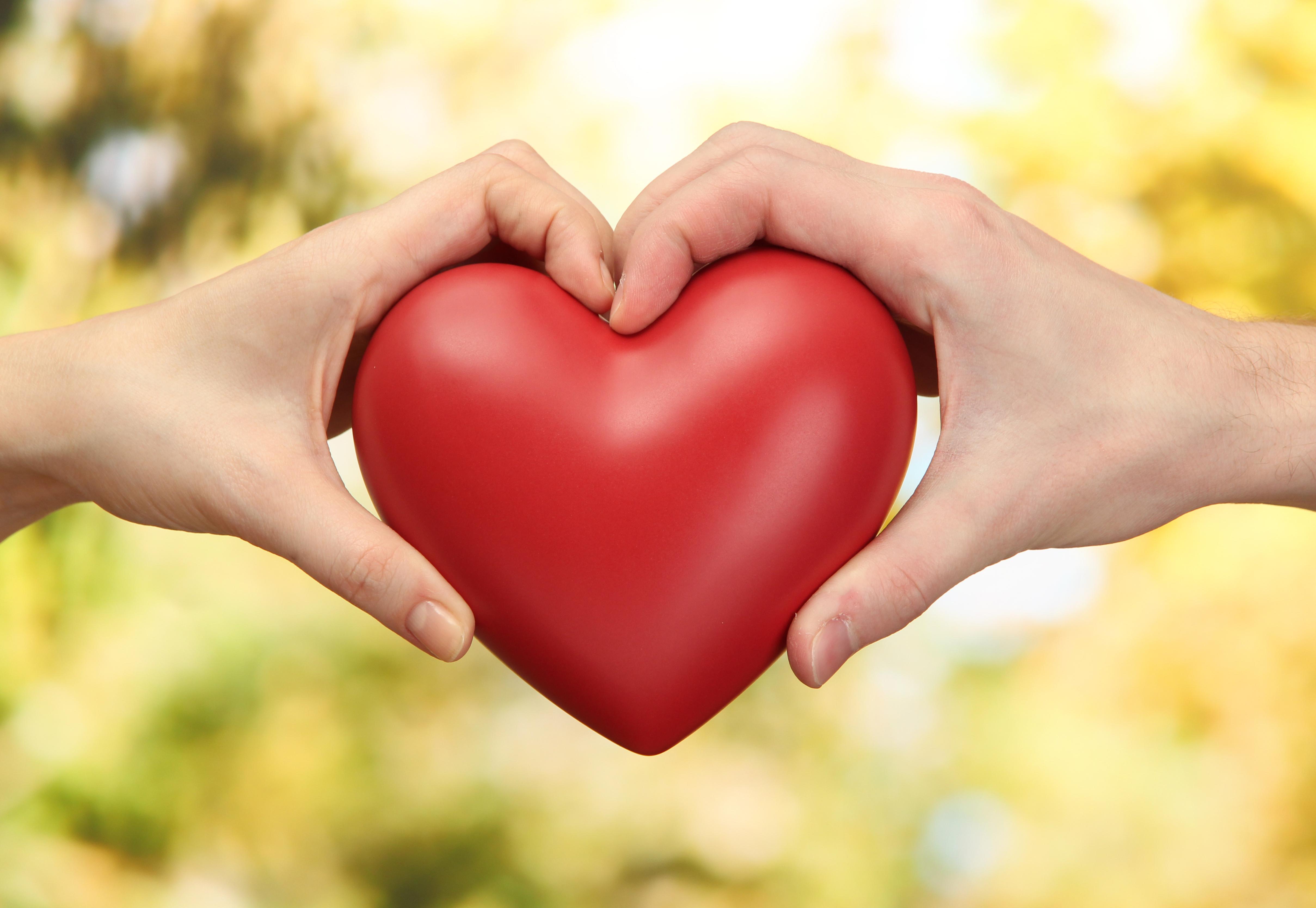 Сердце в ладошках  № 923315 бесплатно