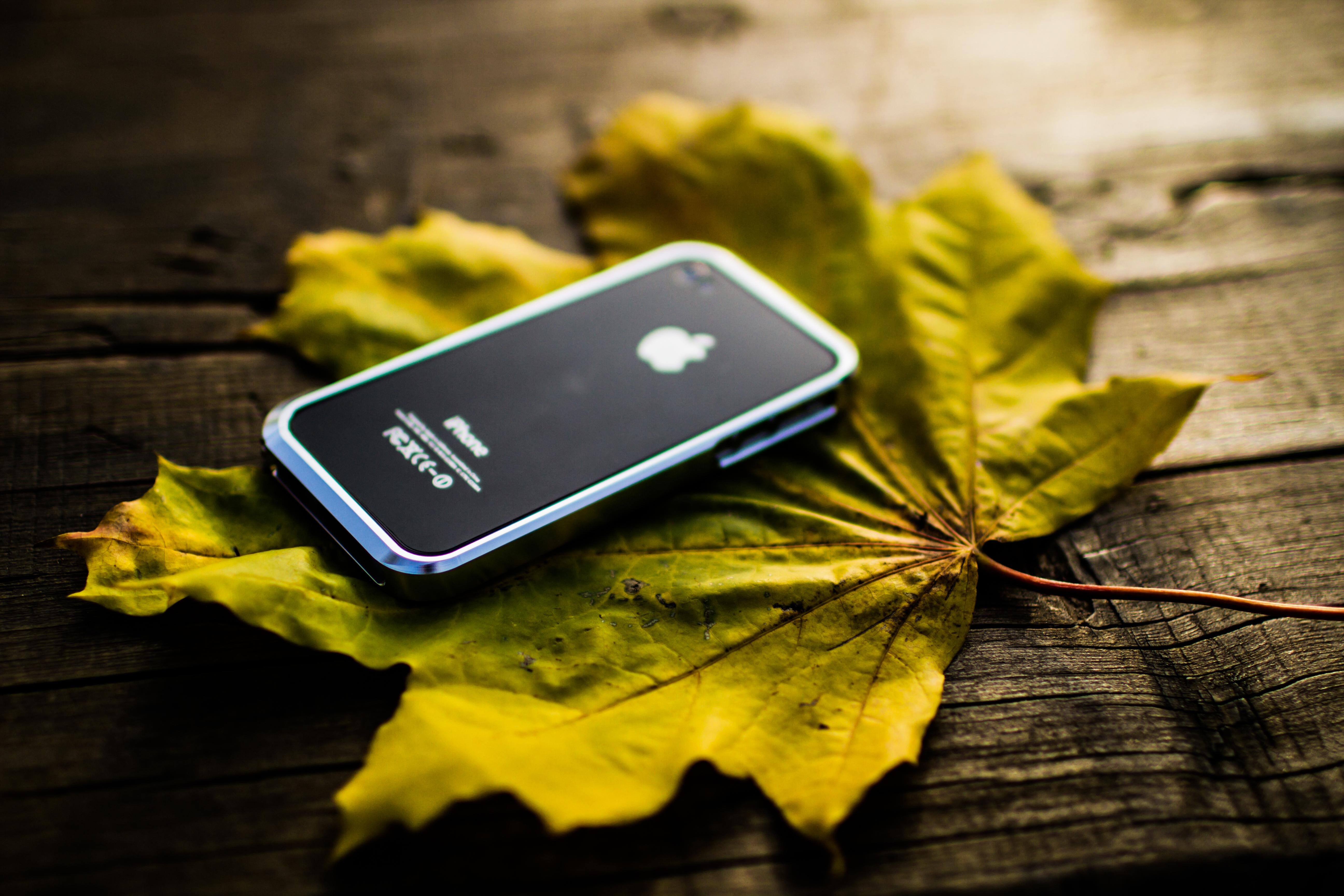 Обои На Телефон Iphone