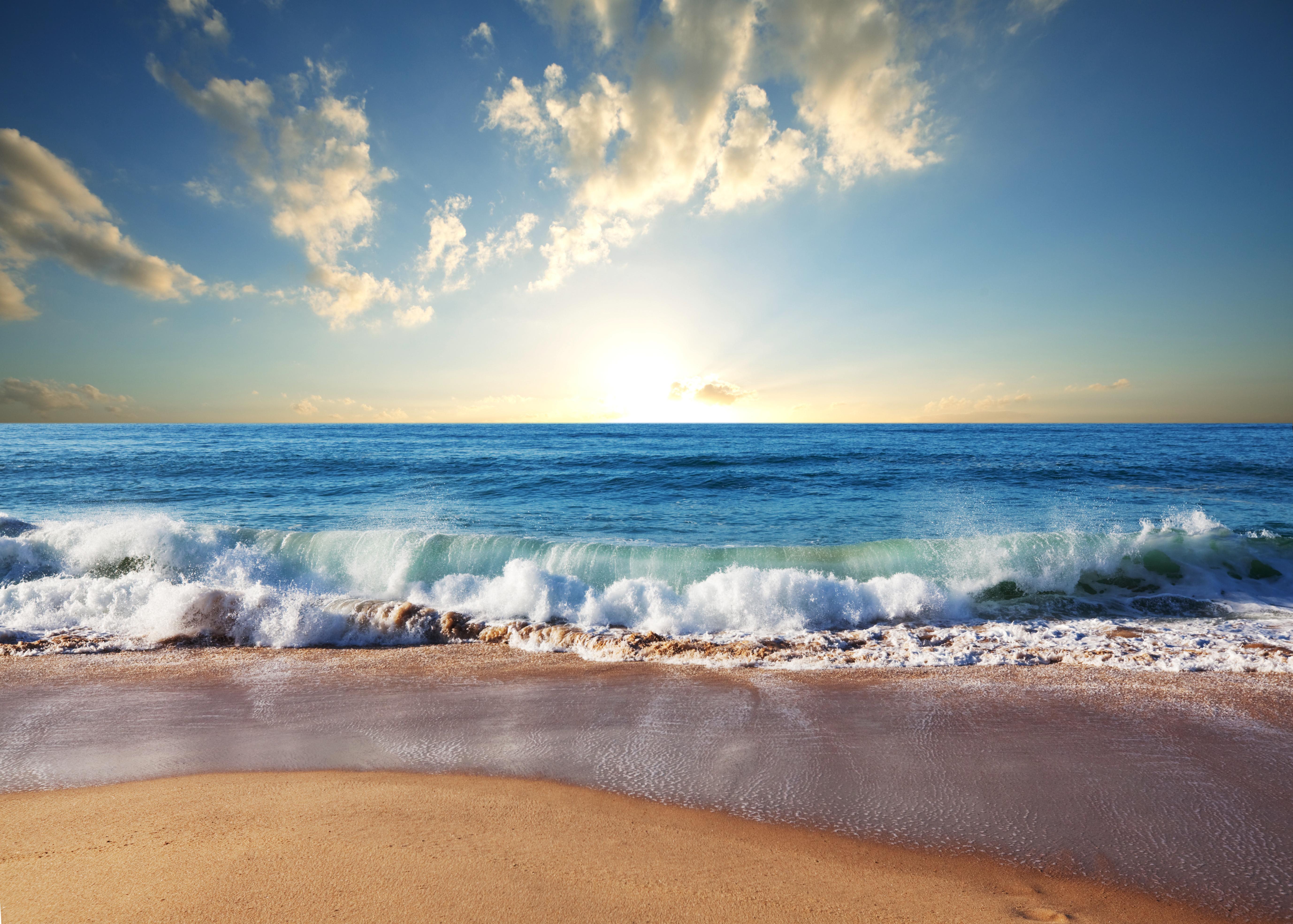 берег волны море  № 251124 бесплатно