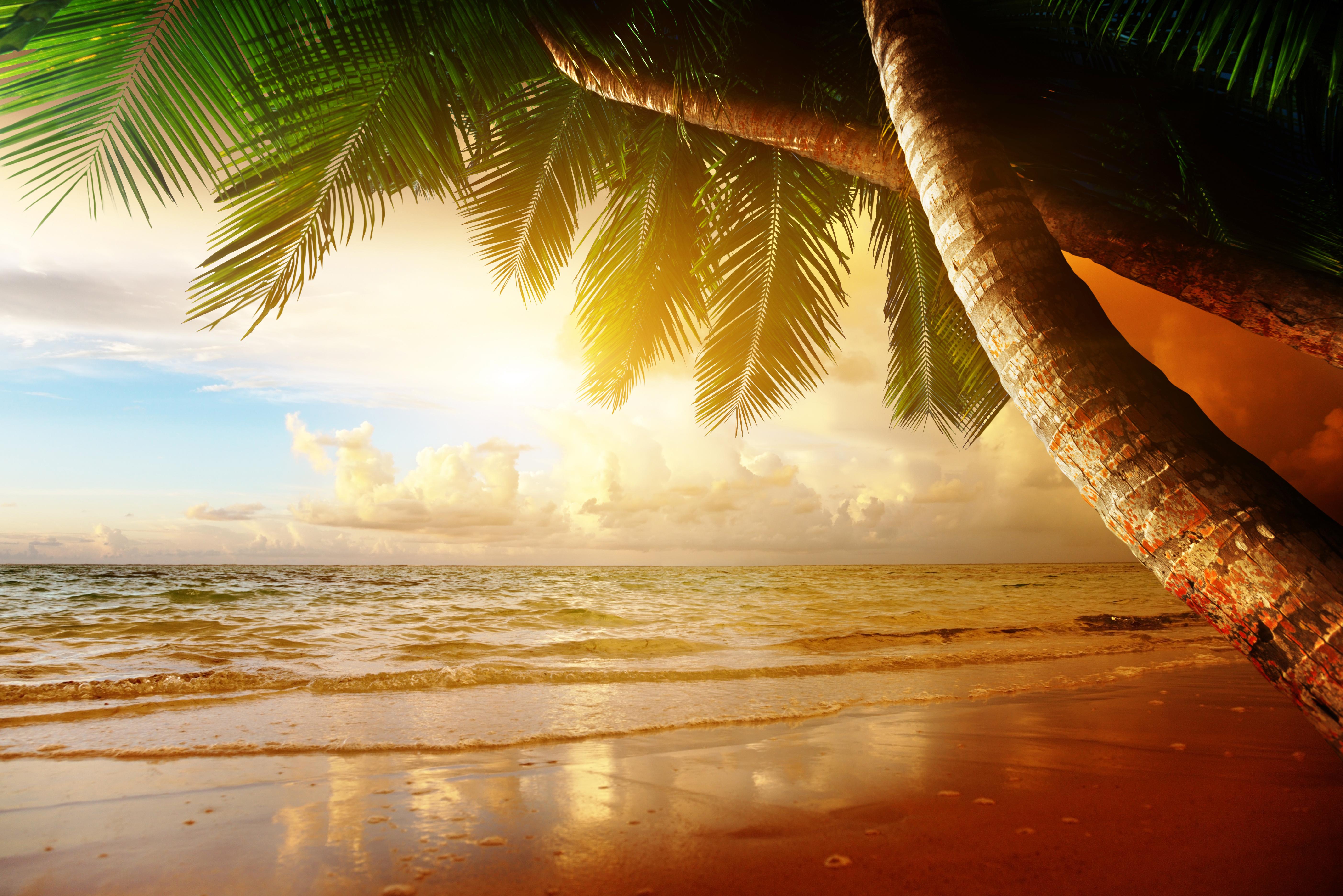Днем, картинки море пляж солнце