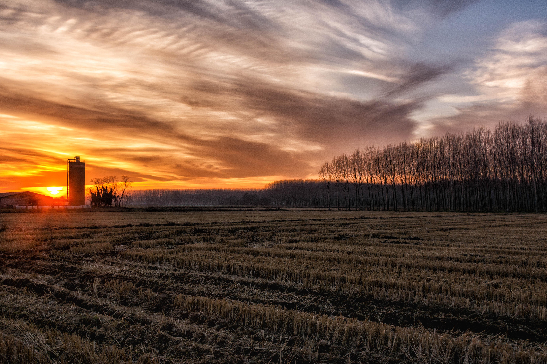 закат поле джипы небо  № 3800534  скачать
