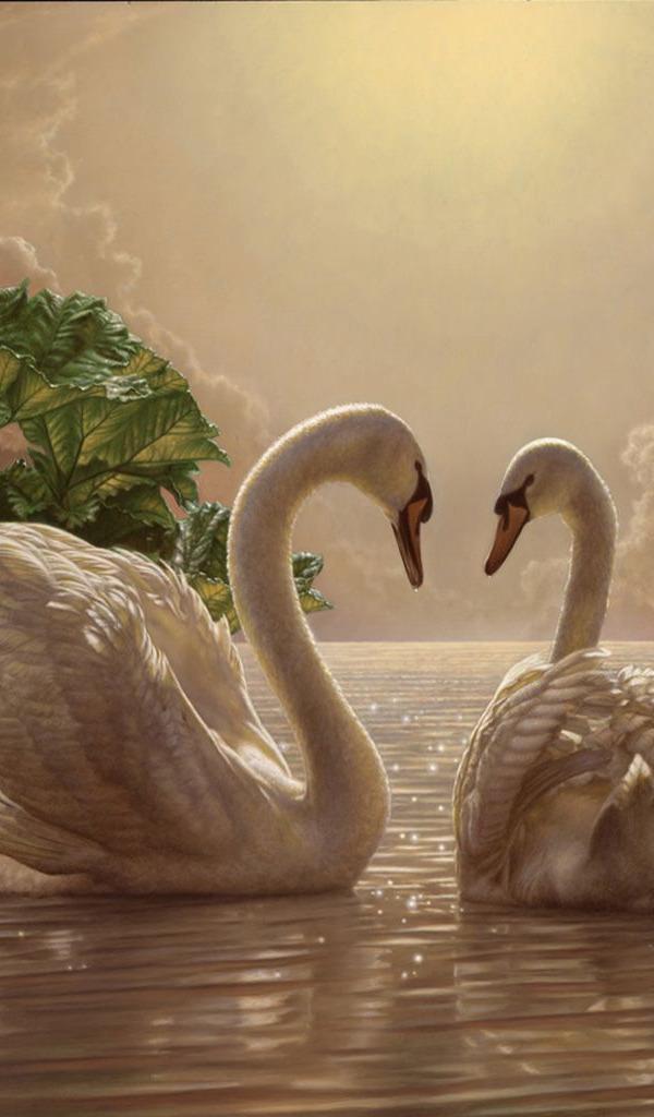 Картинки лебедей анимация