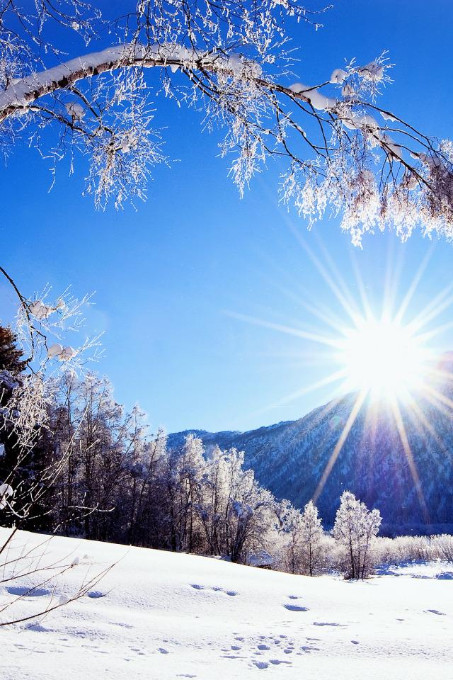 картинки про зиму вертикальные если