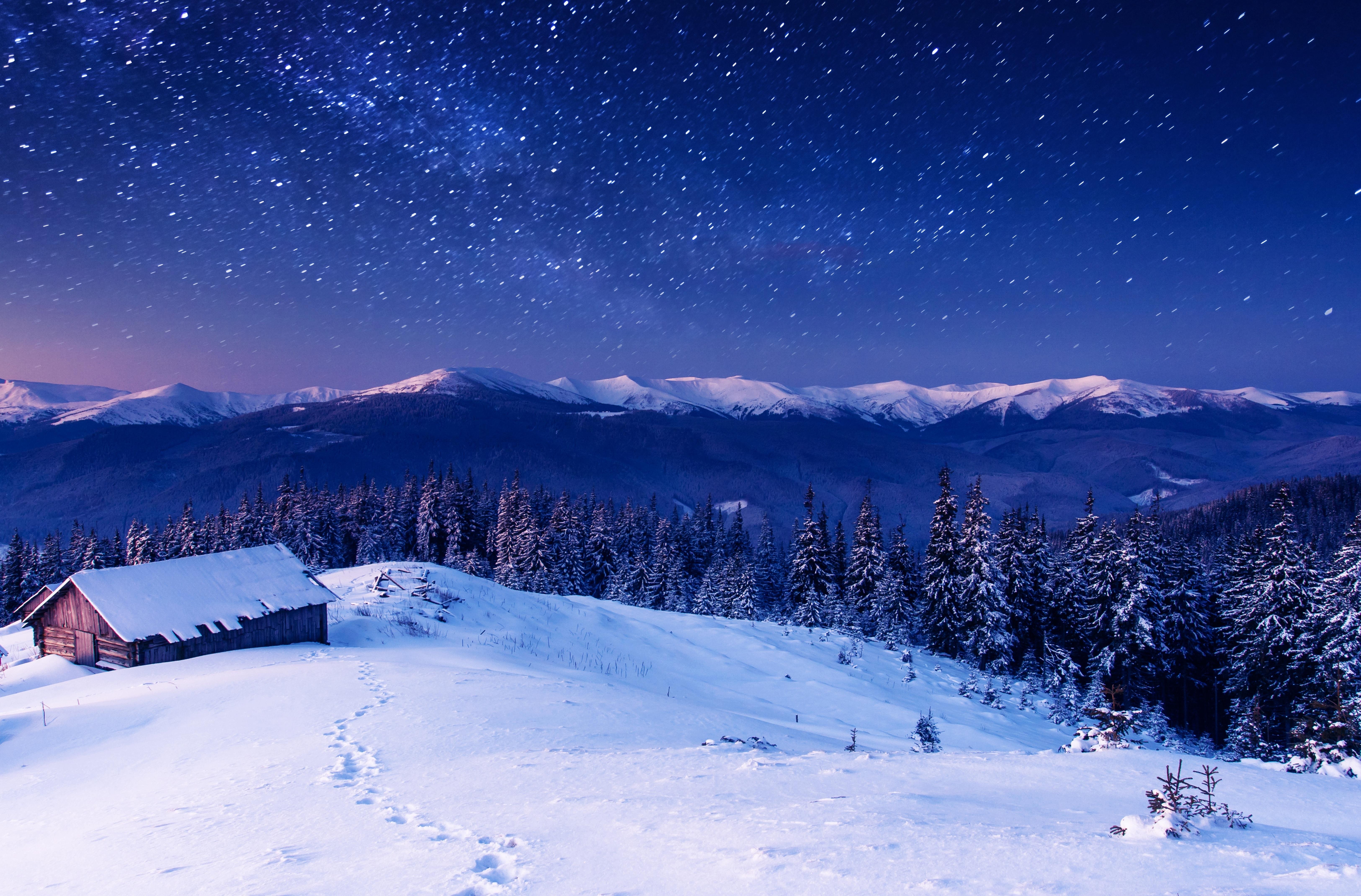 назвал элемент фото новогодней ночи в природе расскажем