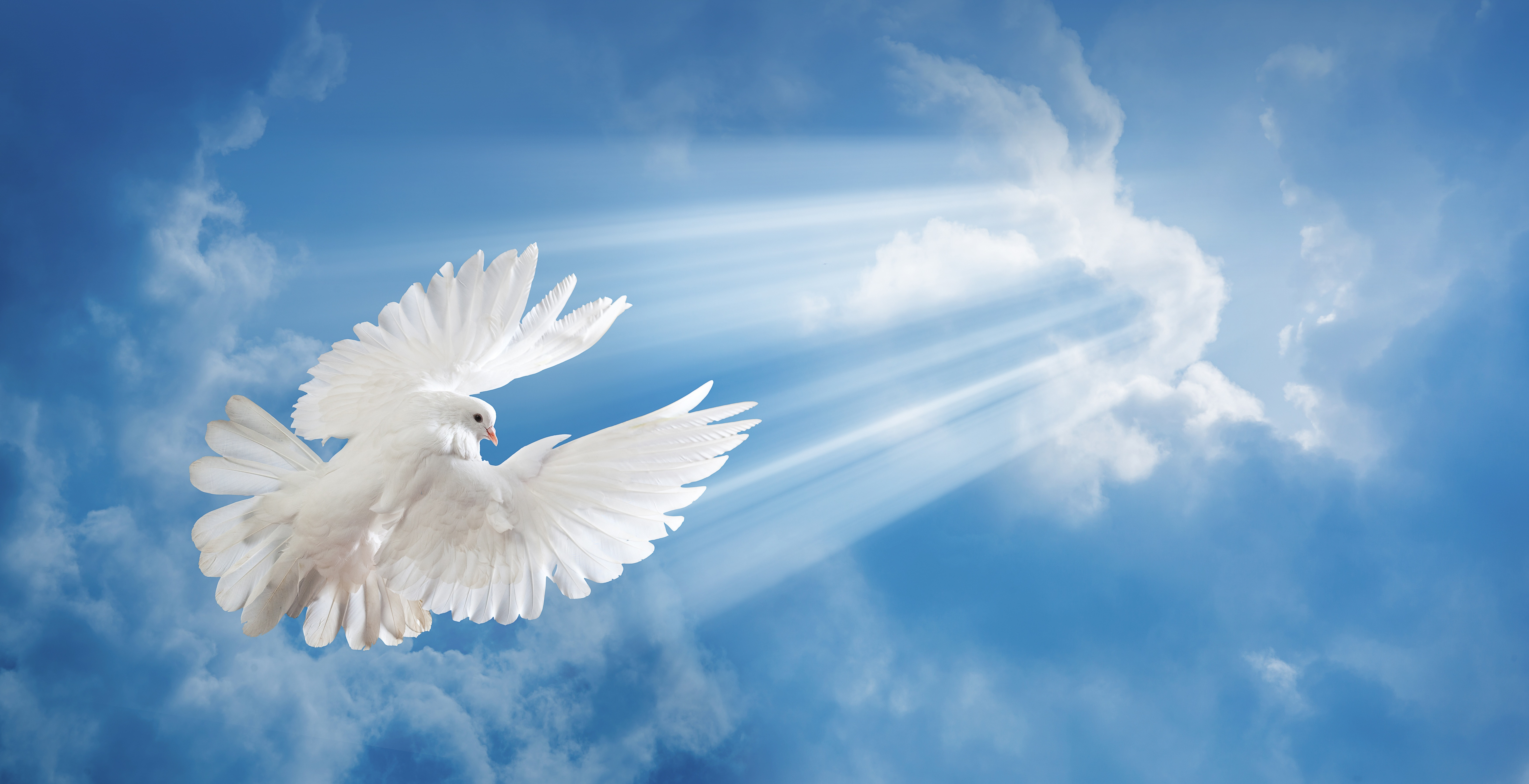 Небо голуби