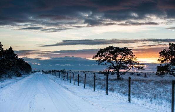 Картинка зима, дорога, поле, небо, снег, деревья, пейзаж, закат, тучи, природа, забор, ограда