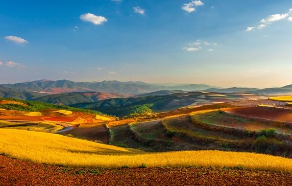 Картинка поле, небо, облака, холмы, горизонт, Китай, ферма, линии электропередачи, Юньнань, Куньмин