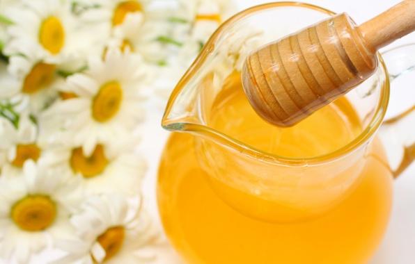 Картинка цветы, ромашки, мед, кувшин, honey