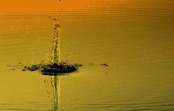 water droplet unique wallpaperjpeg - photo #11