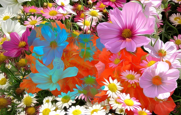 Картинка линии, цветы, абстракция, краски, лепестки, ромашка, космея