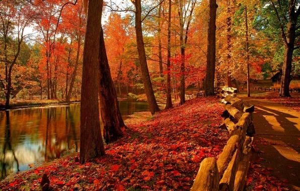 Картинка осень, лес, небо, листья, вода, деревья, горы, природа, парк, река, colors, colorful, forest, river, sky, …