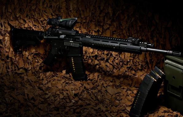 Картинка оружие, винтовка, карабин, Ruger, полуавтоматическая, SR-556E