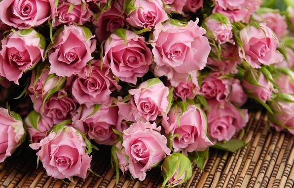 Картинка цветы, розы, букет, лепестки, розовые, бутоны, циновка