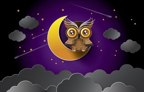 Картинка звезды, ночь, тучи, сова, луна