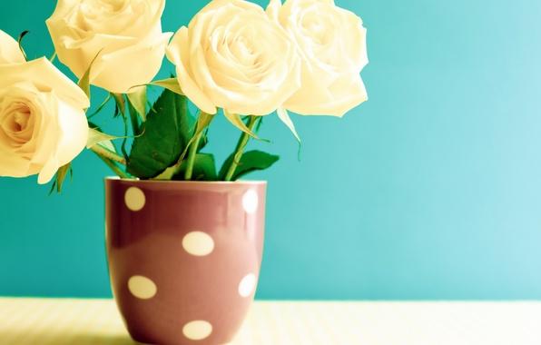обои на рабочий стол с фантастические цветы