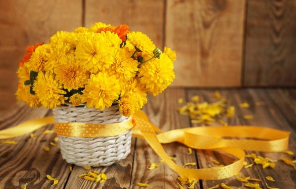 Картинка цветы, букет, лепестки, натюрморт
