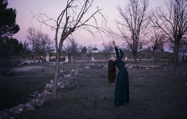 Картинка девушка, поза, дерево, платье, изгиб
