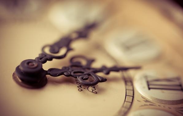 Картинка макро, время, фон, часы